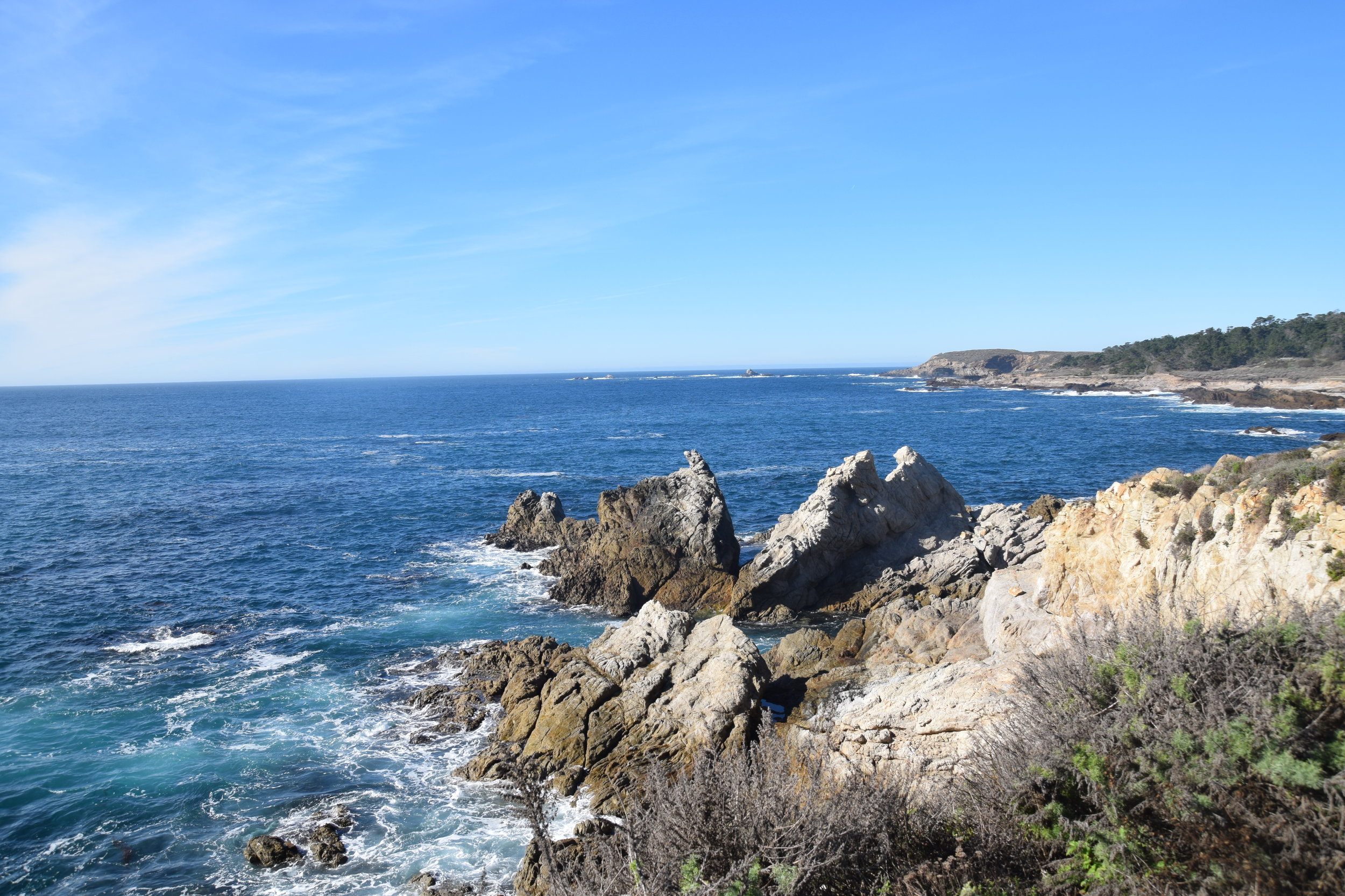 """Point Lobos State Park is named for the howling """"sea wolves"""" (sea lions) that visit periodically."""
