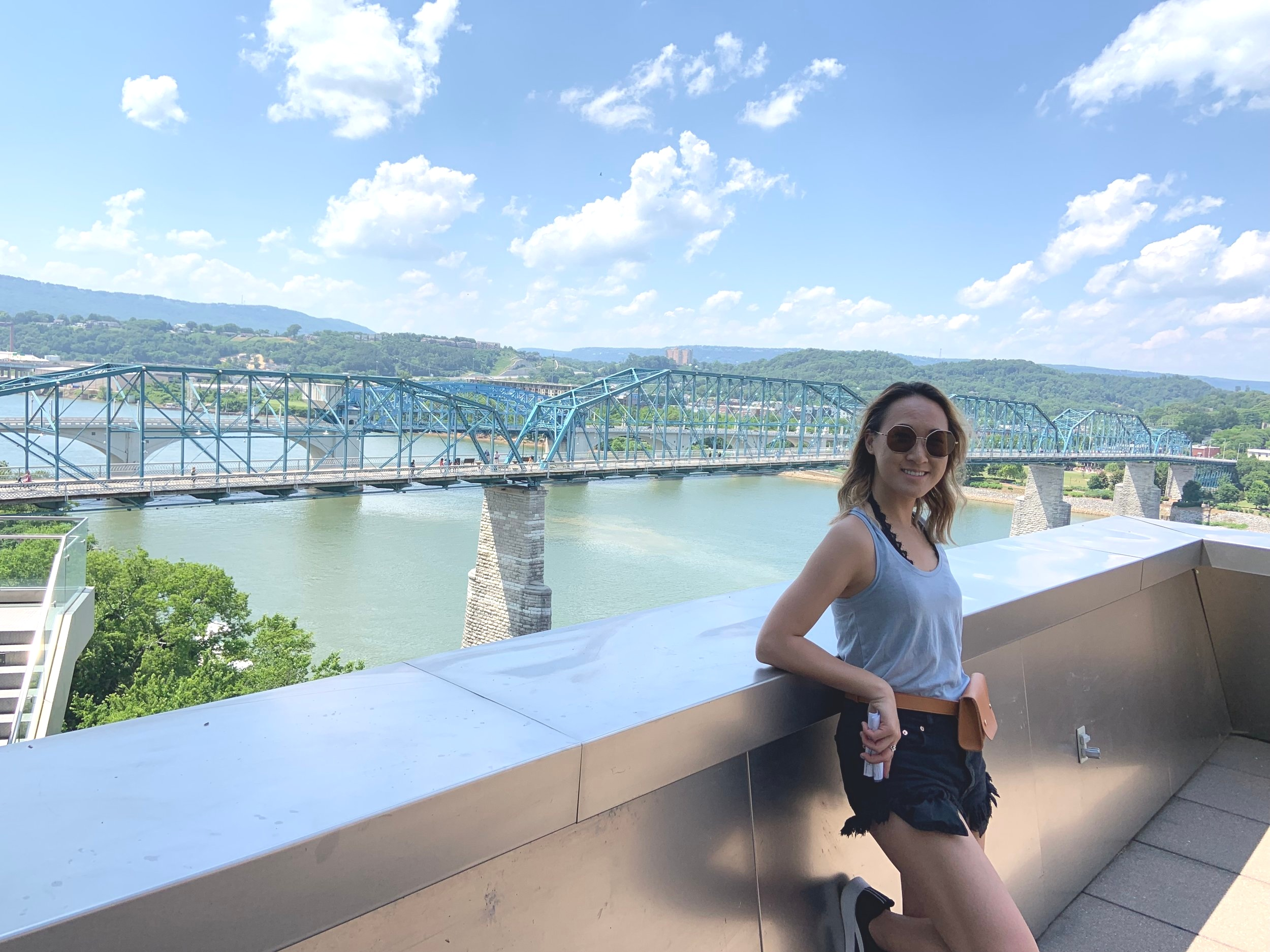 We walked across the Walnut Bridge and went to the Hunter Museum of American Art. Got this view here.