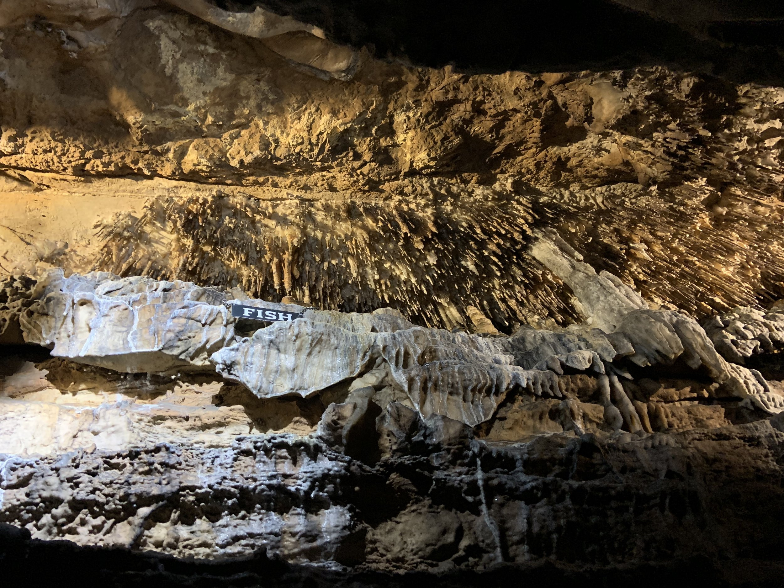 I didn't take much pictures since we were inside the cave, and lighting was not the best. But I just love this picture showing the beauty of the inside of a cave.