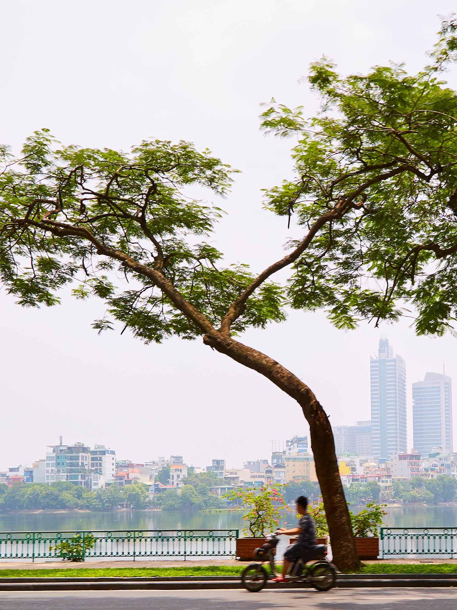 CNT_Hanoi_Truc_Bach_Lake_01.jpg