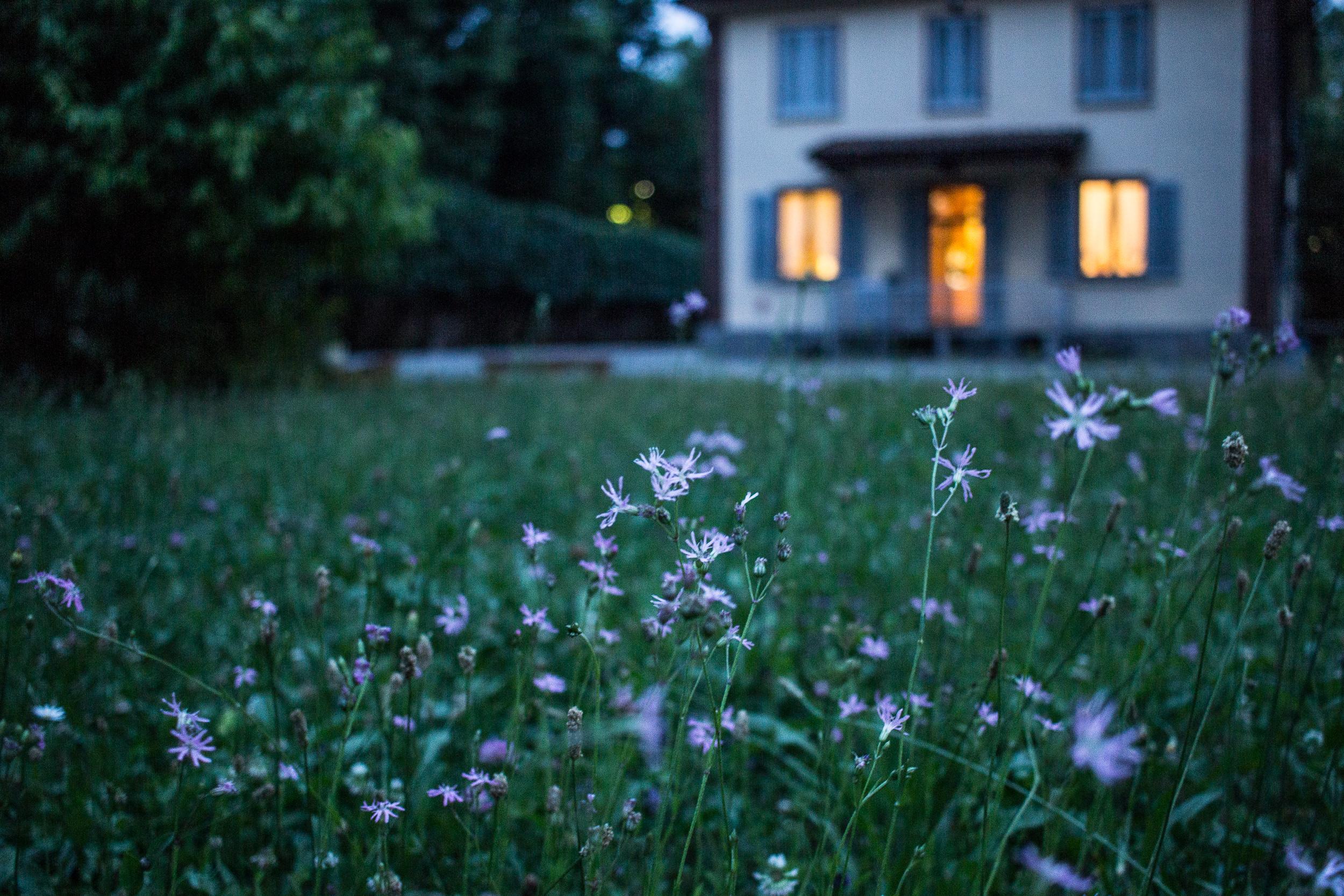 housewithflowers.jpeg