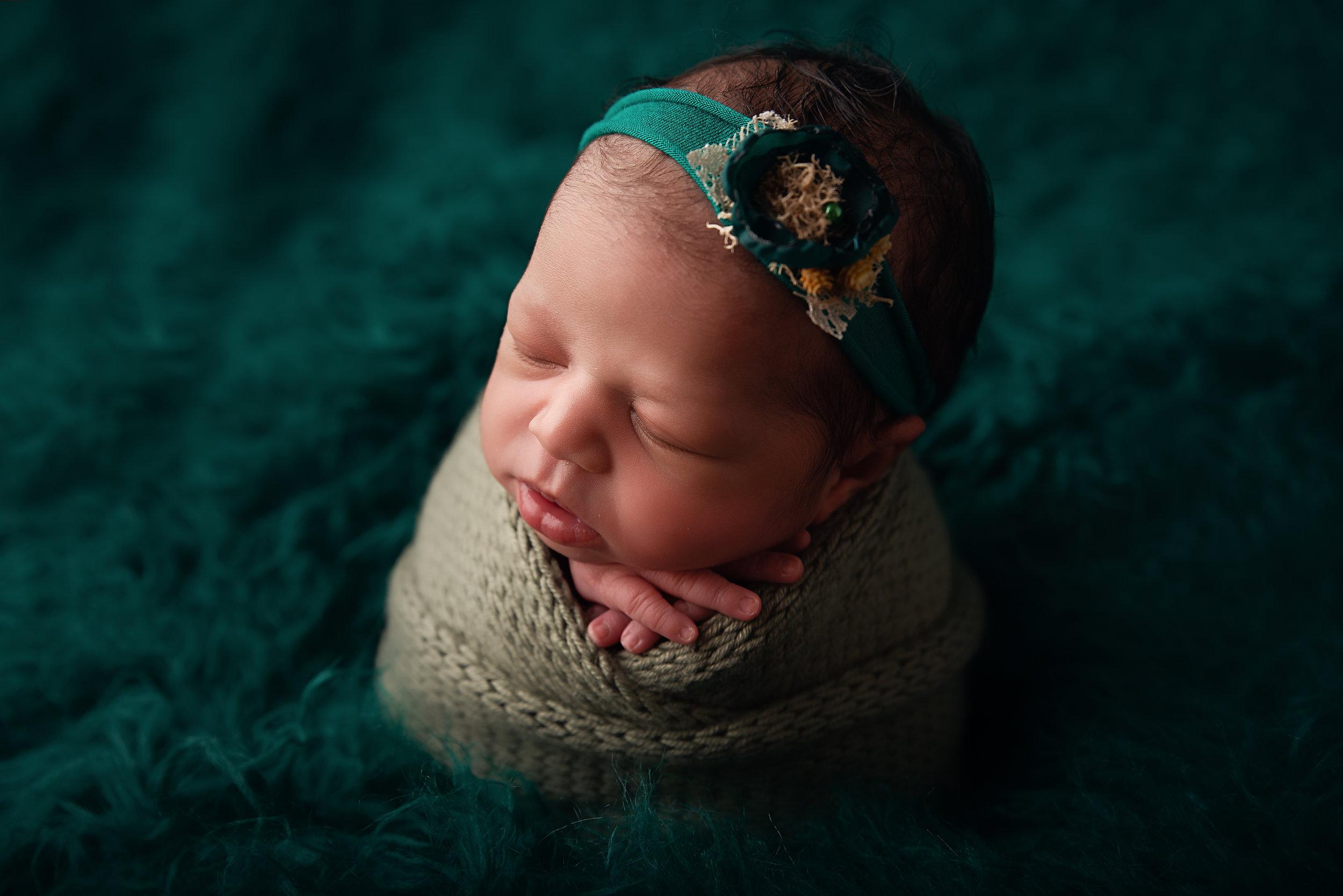 charlotte newborn photographer fur on dog bed.jpg