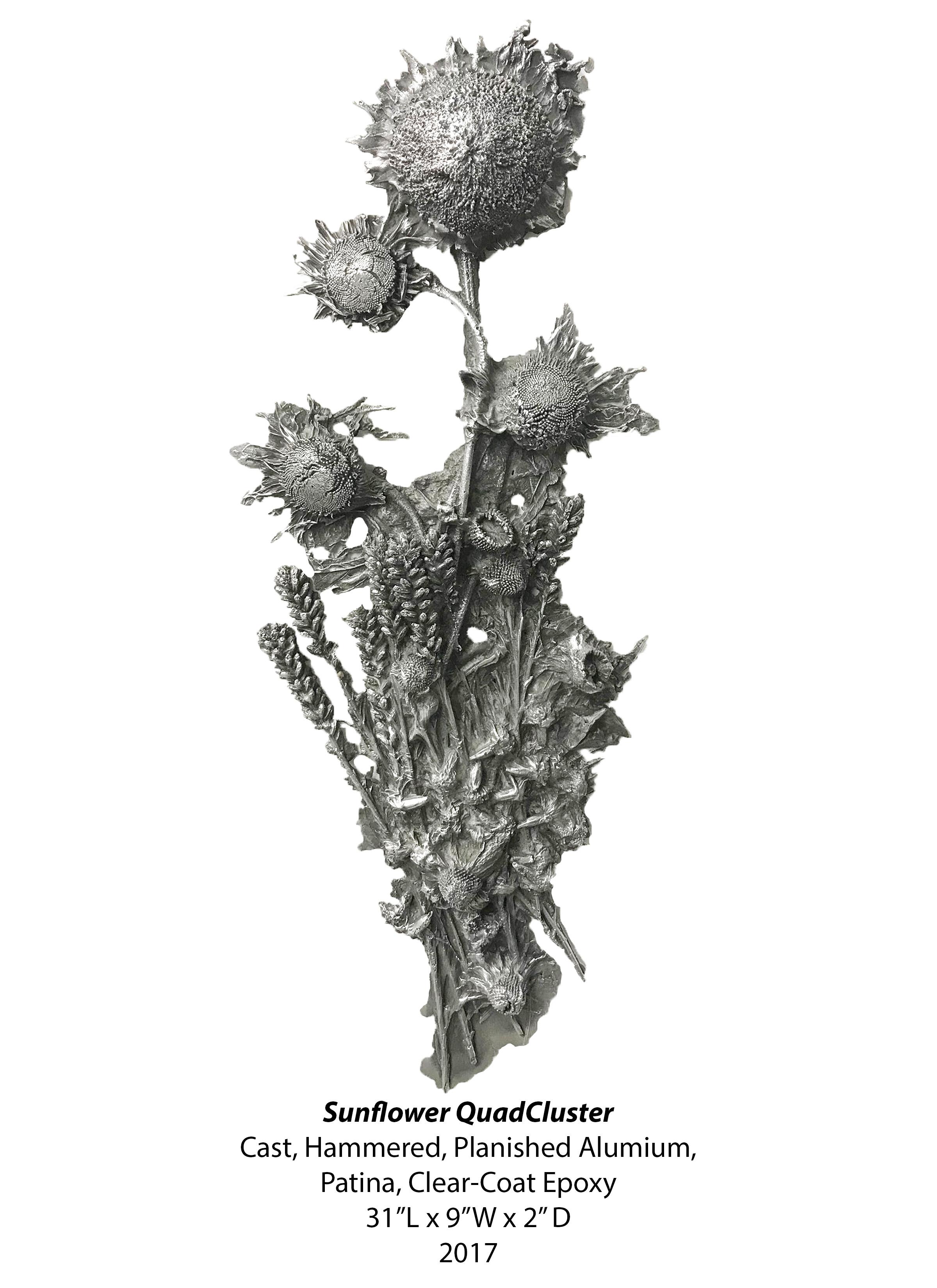 SunflowerQuadCluster.jpg