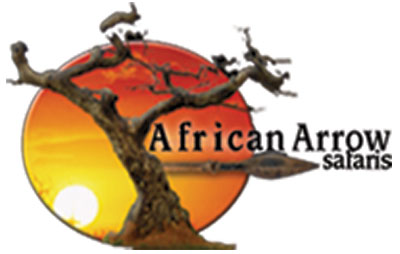 african-arrow.jpg
