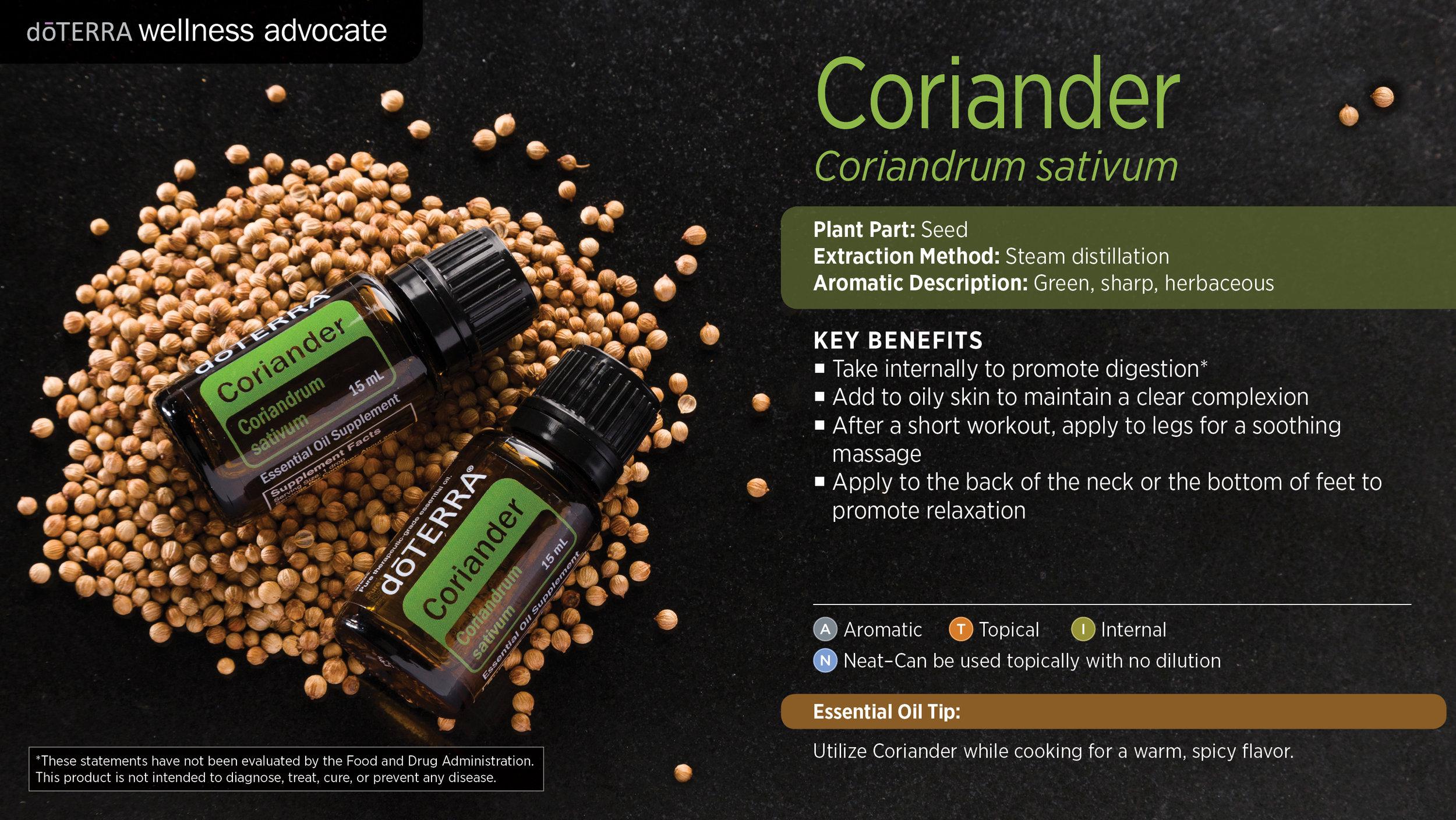 wa-coriander.jpg