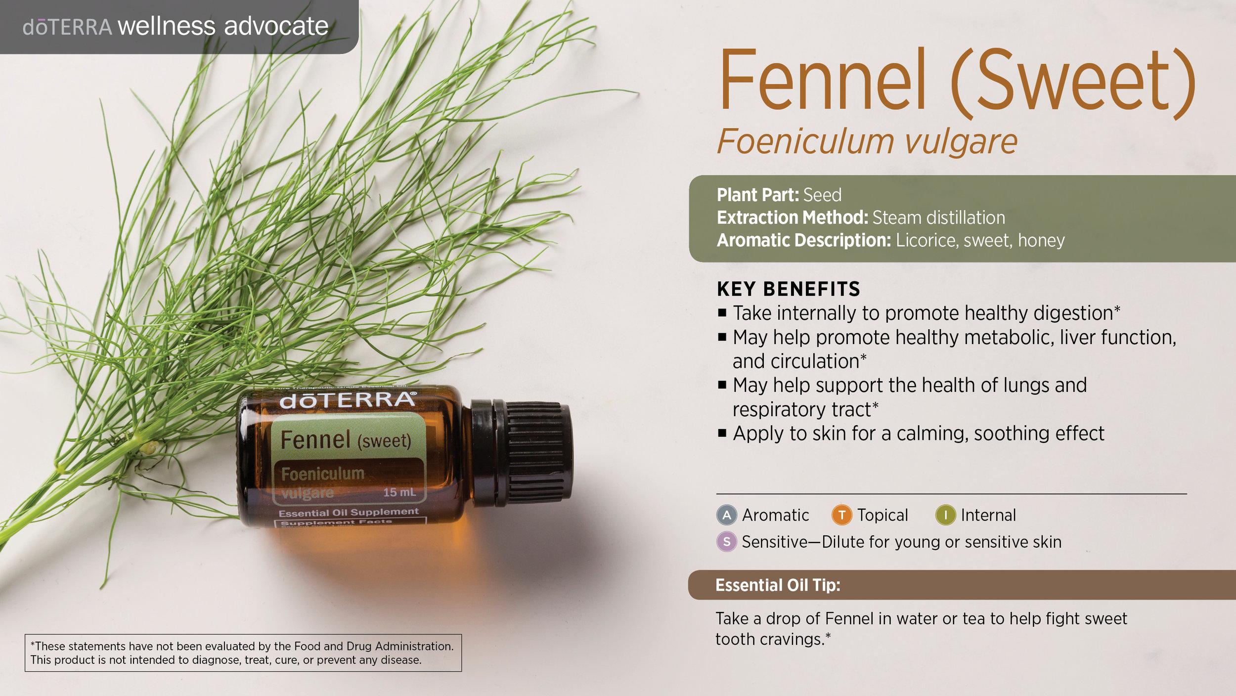wa-fennel.jpg
