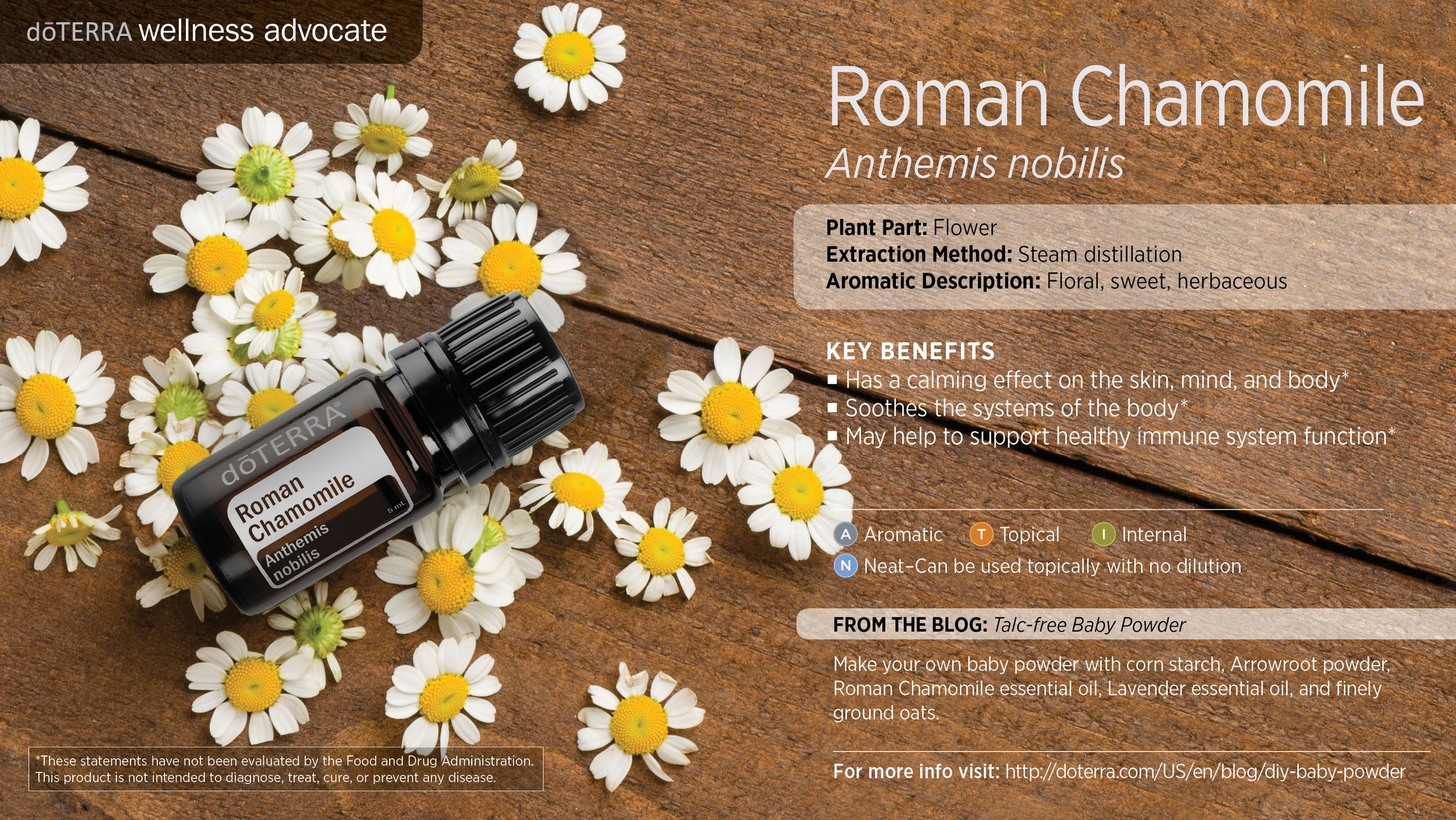 wa-roman-chamomile.jpg