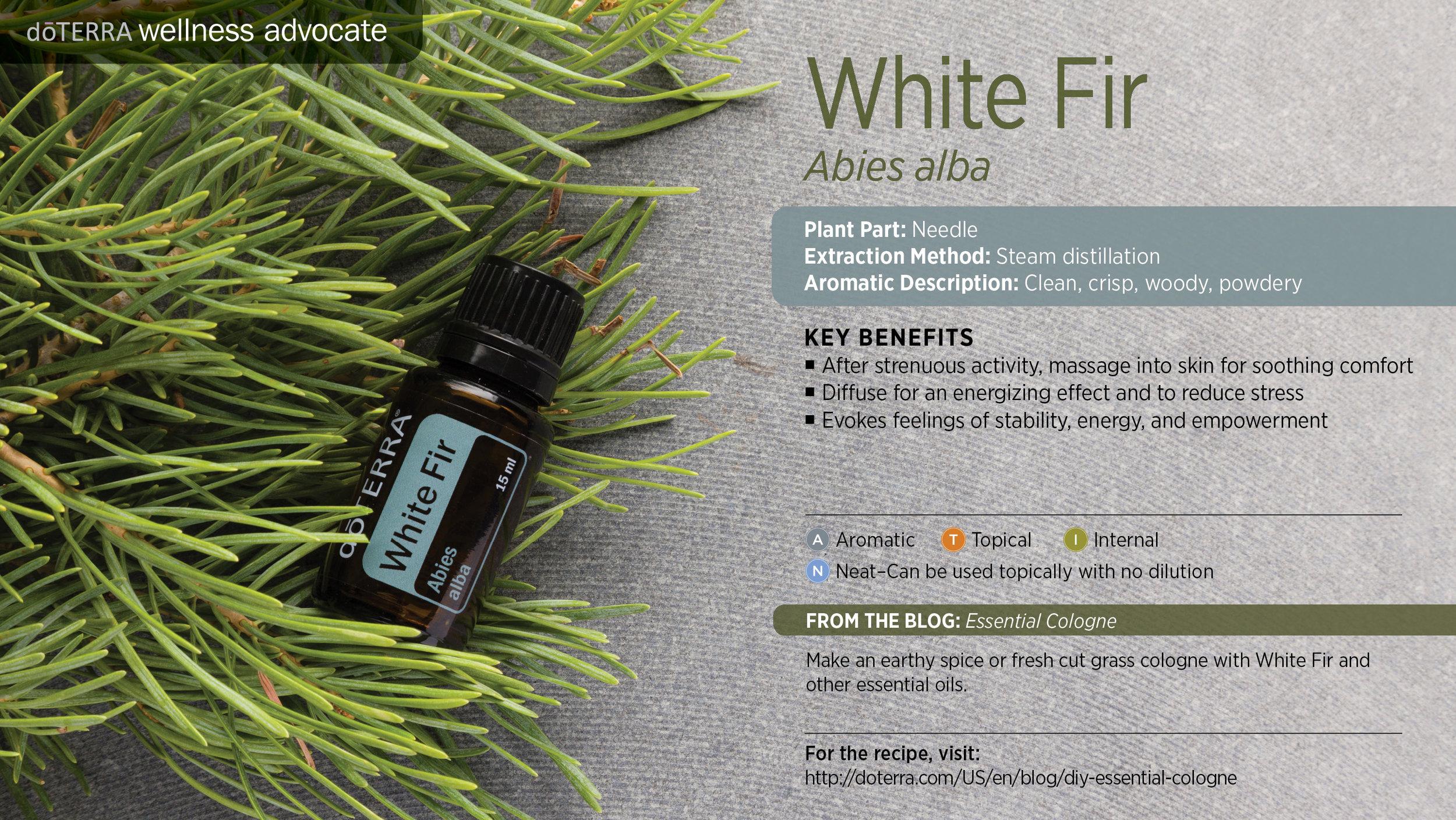 wa-white-fir.jpg
