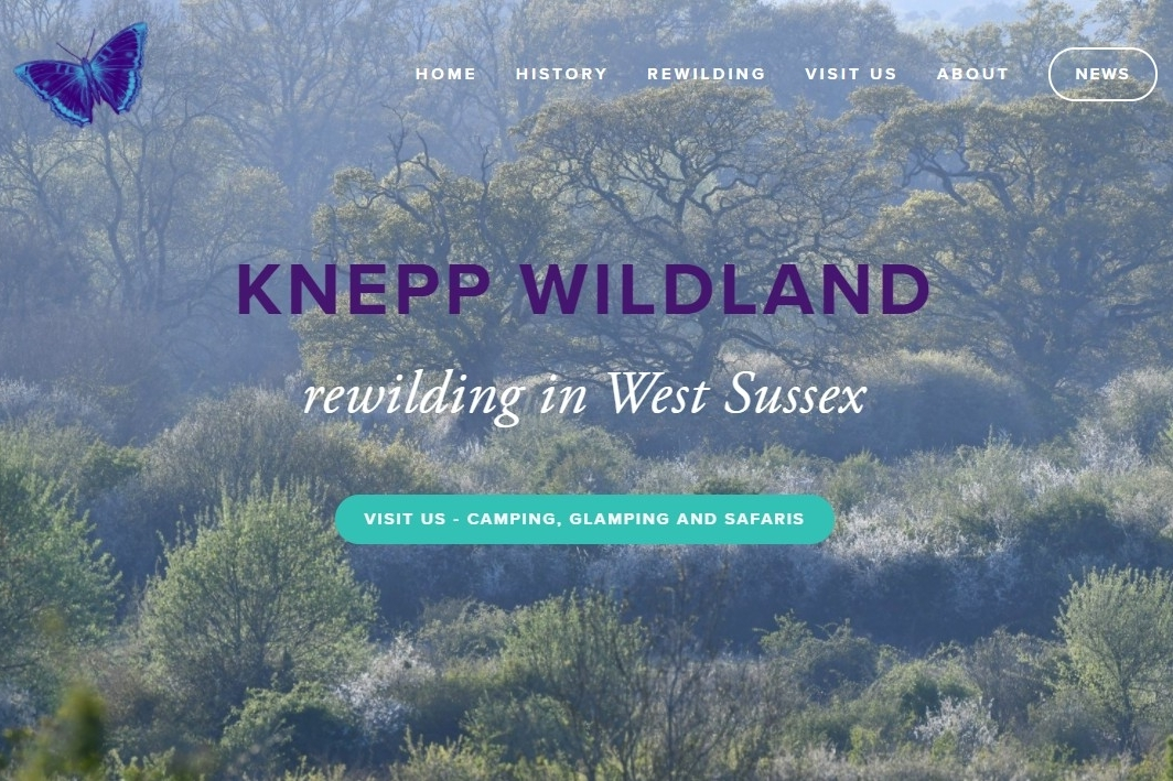 KNEPP WILDLAND      Rewilding in West Sussex