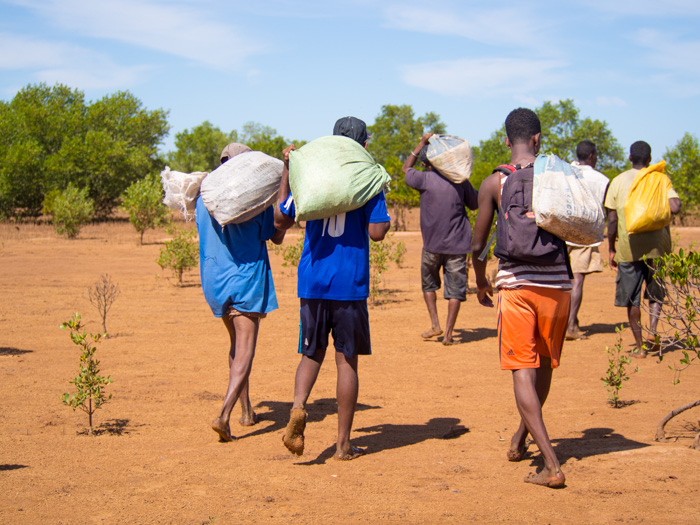 The employees carrying sacks of Mangrove propagules for planting near Majunga where we went along for a days planting