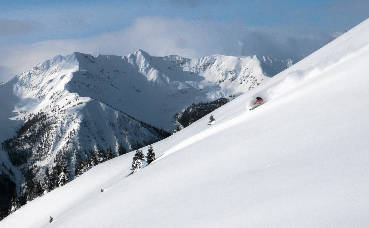 Pristine powder at Kicking Horse, BC. Photo: Sam Murray