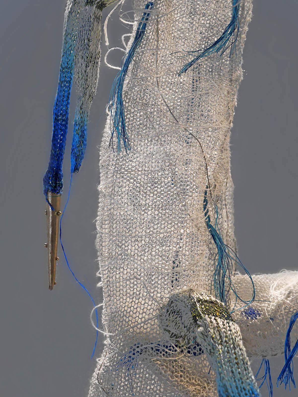 Papaver Setigervum Roots - Detail