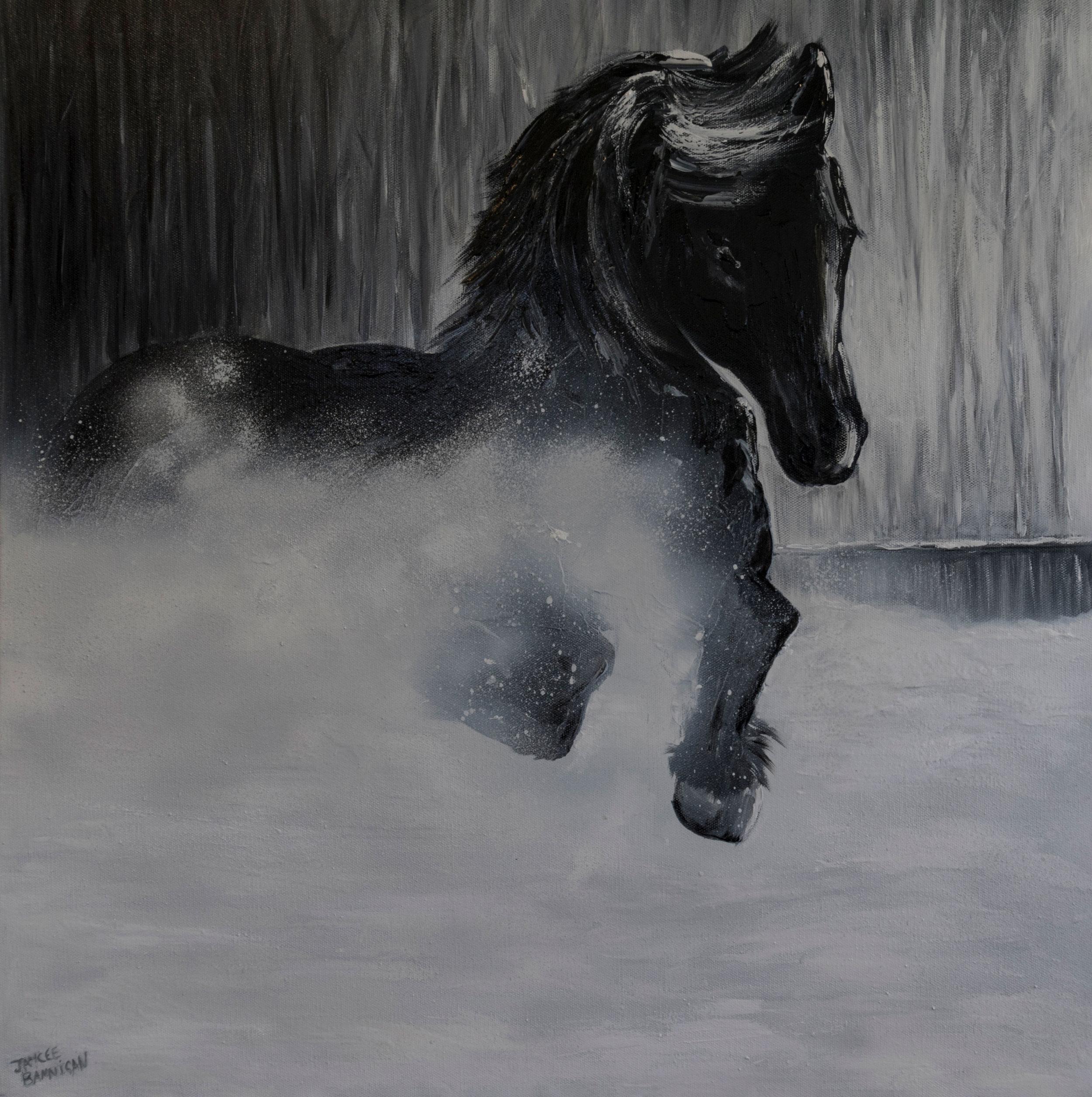 'Snow Pony' 80cm x 80cm
