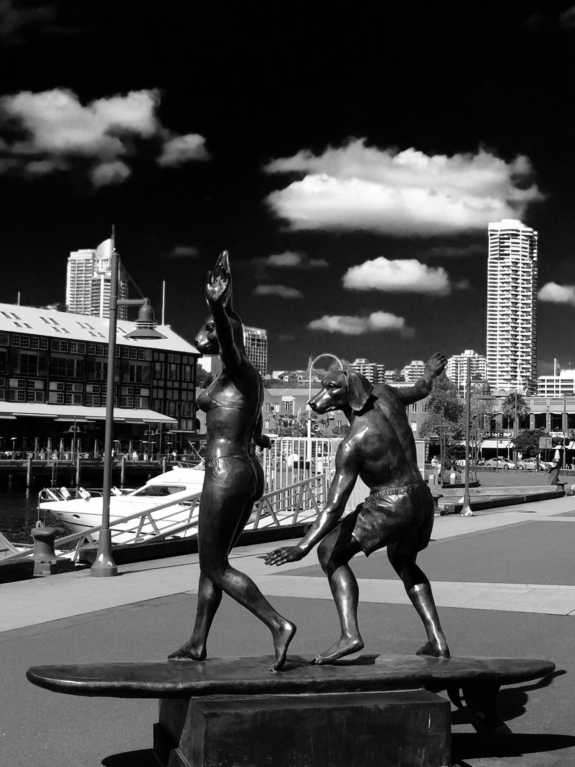 Sydney City Surfing