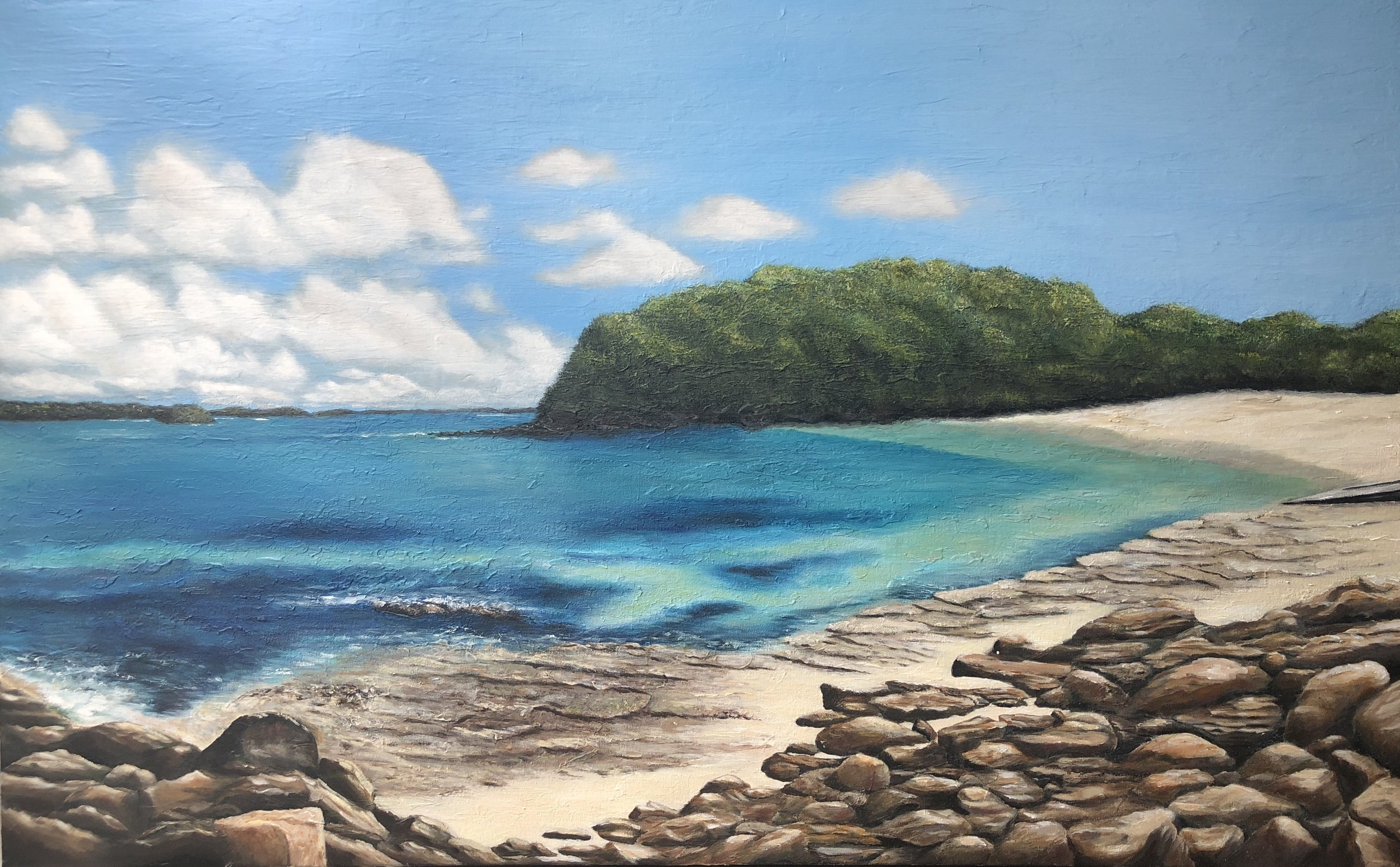 """Shelley Beach Manly"" Acrylic on stretched canvas 130cm x 85cm Not For Sale"