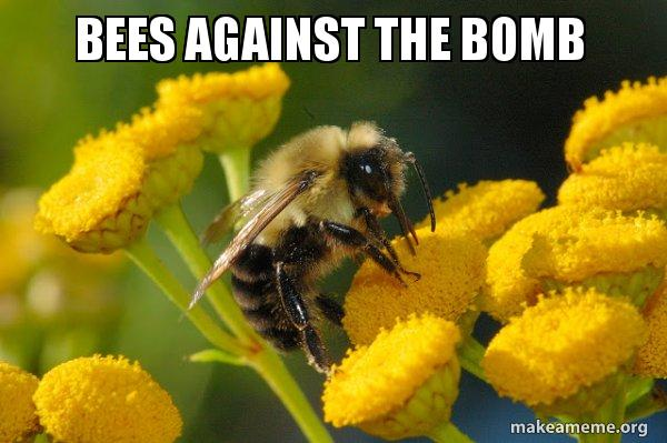 bees-against-the.jpg