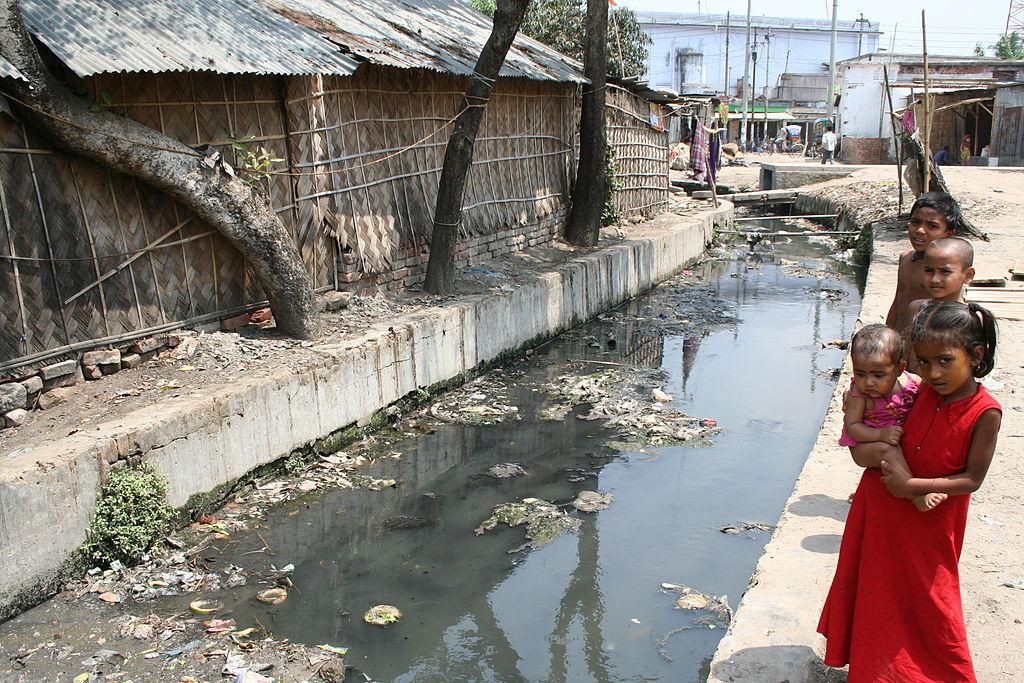 Woman_Washing_at_Water's_Edge,_Bangladeshi_Village.JPG