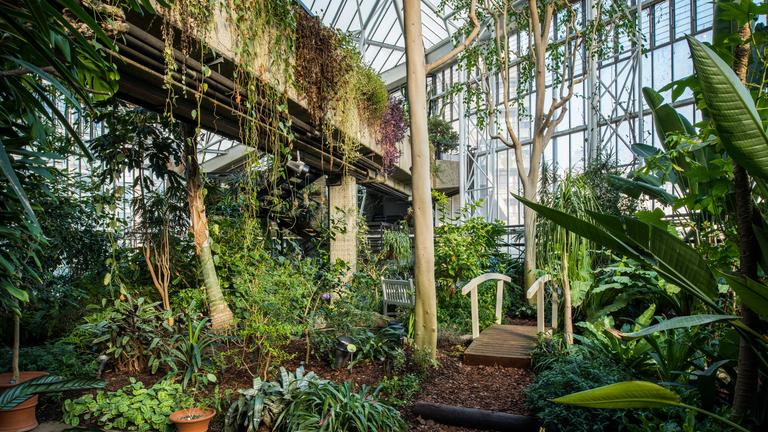 0981-HDR Conservatory, Barbican Centre, CREDIT Max Colson.jpg