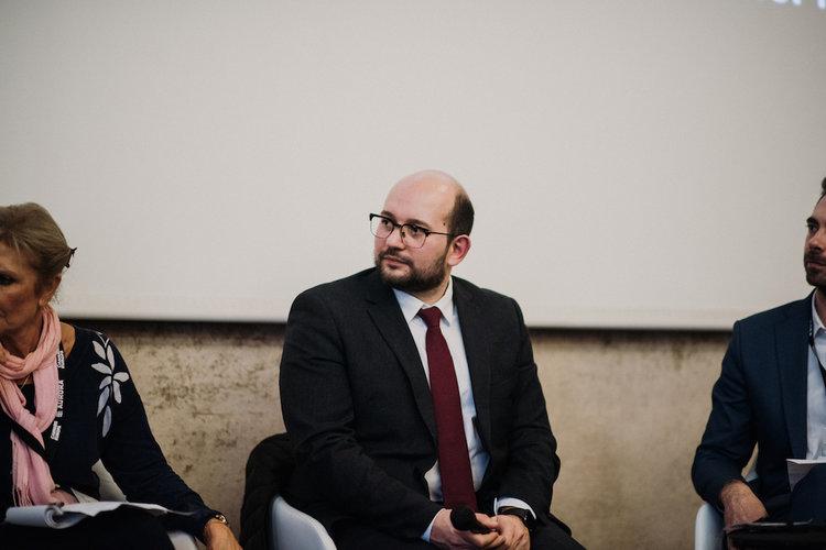 Ludovic Mendes, Deputé, Assemblée Nationale