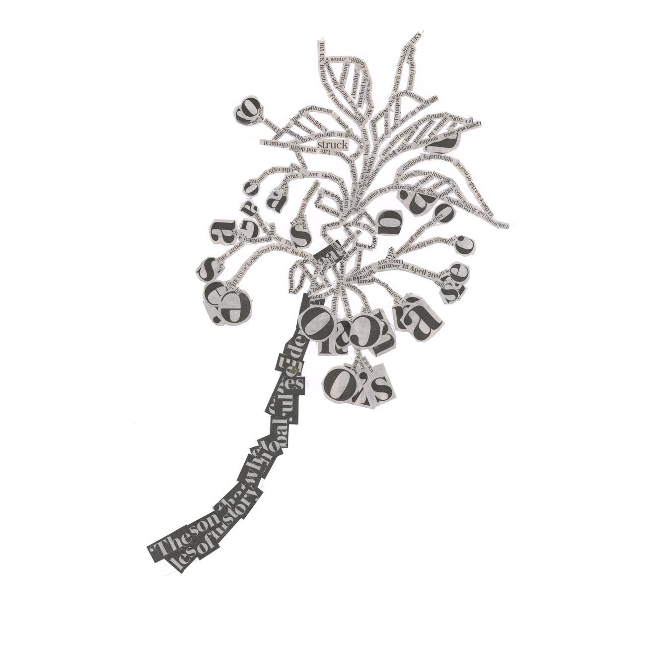 Cherrryblossom in bud.jpg