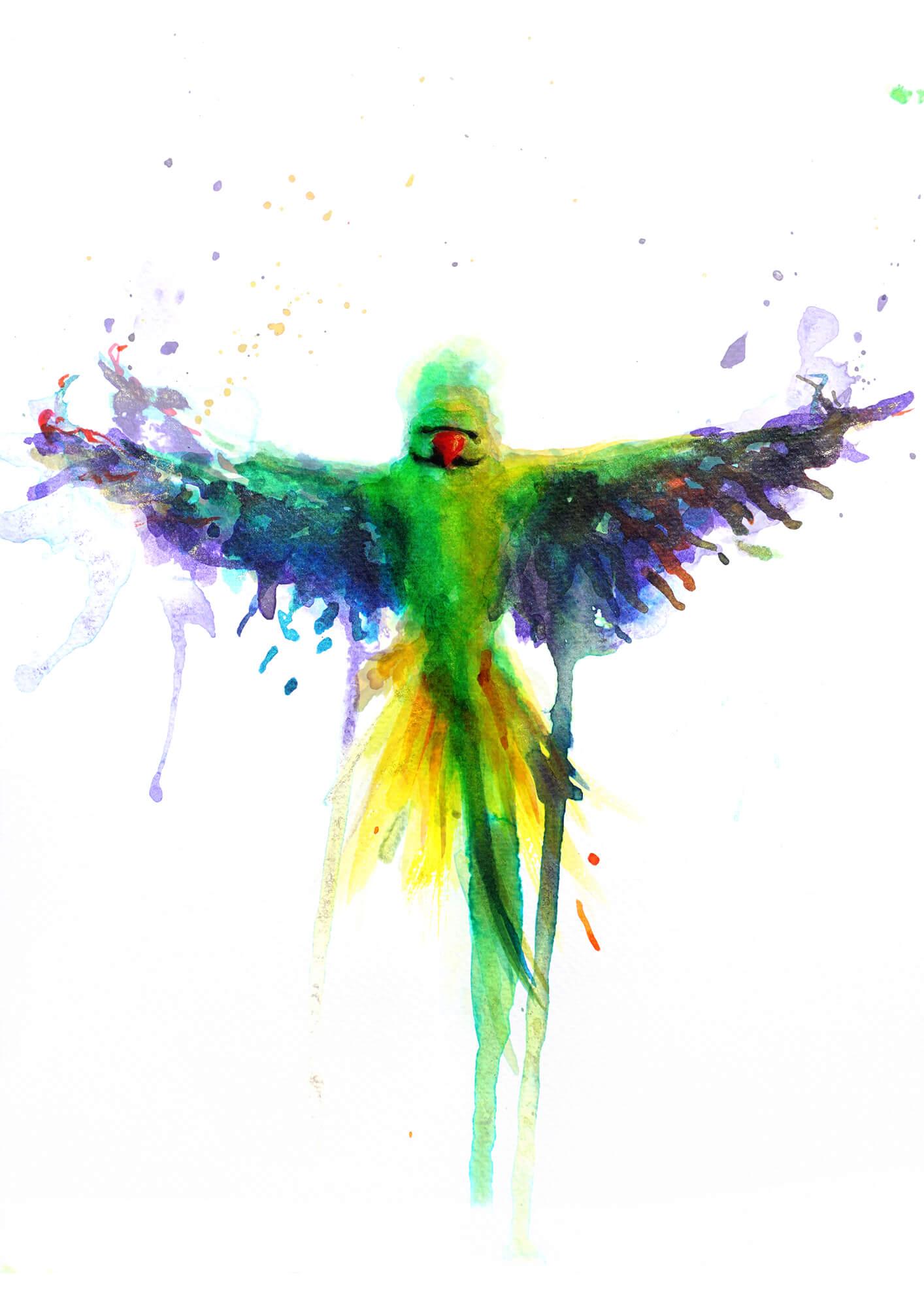 Parakeet PRINT 04.jpg