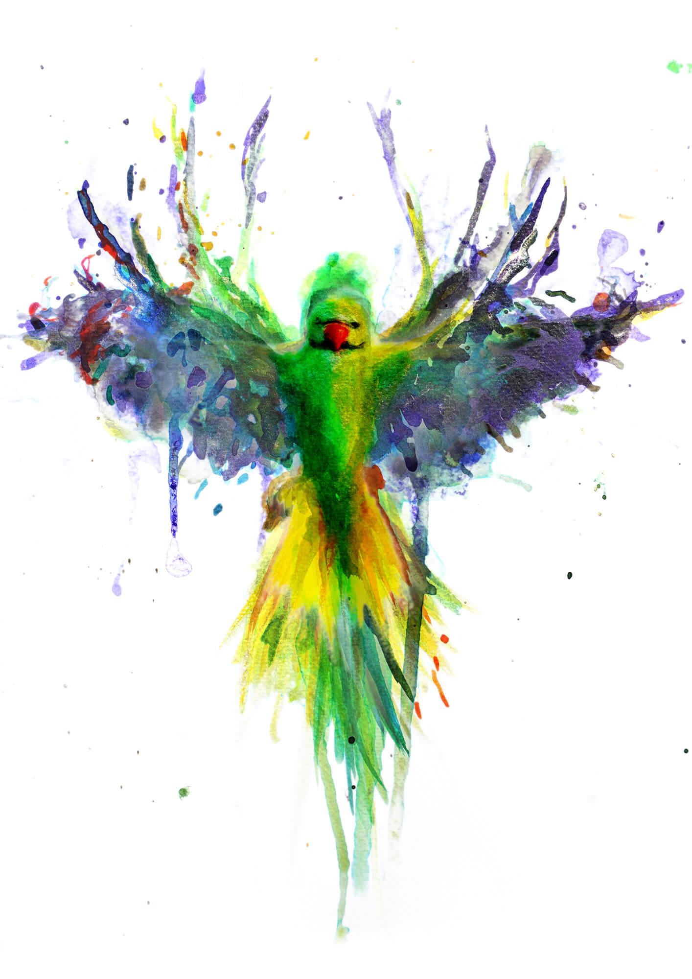 Parakeet PRINT 07.jpg