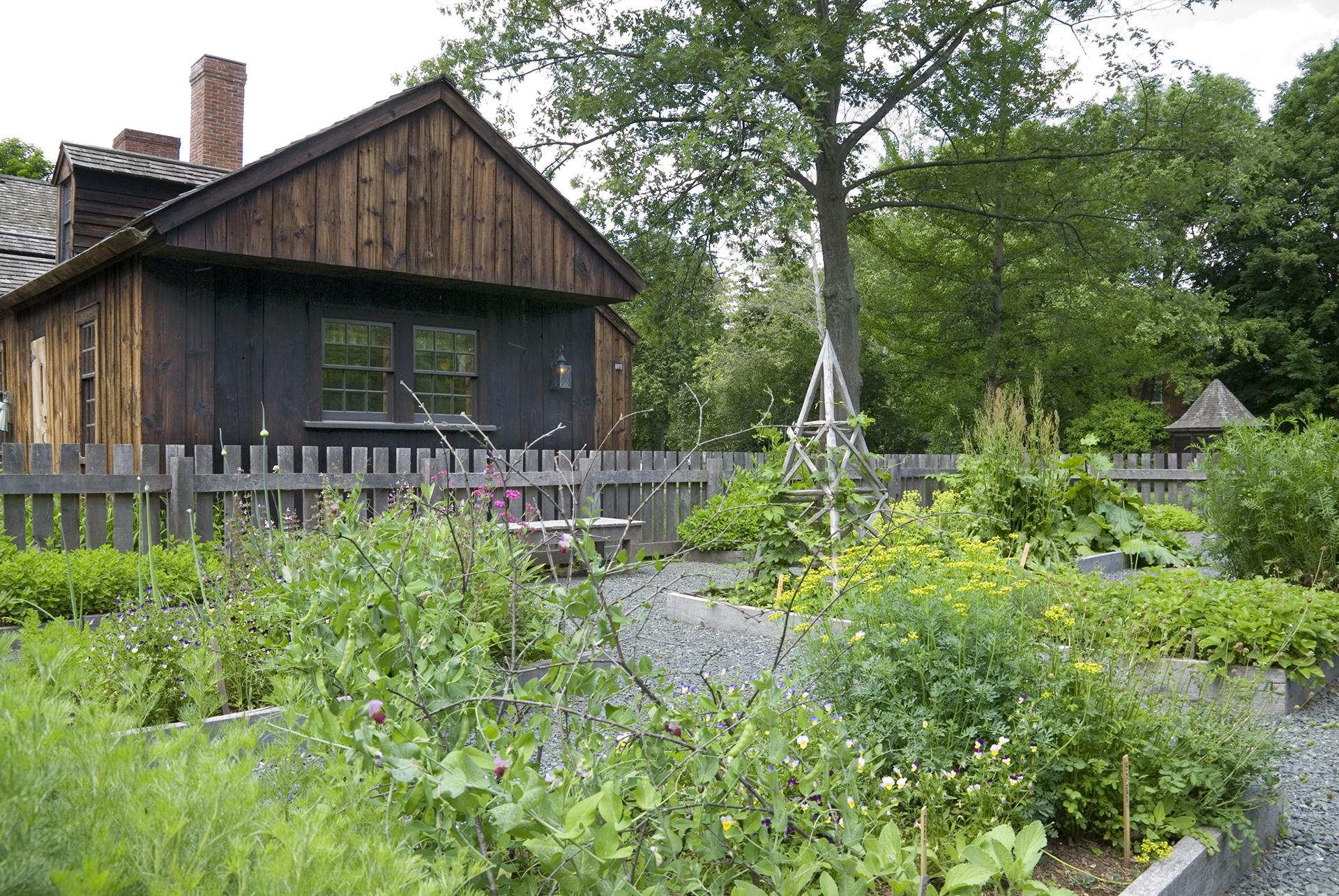 The Cooks' Garden