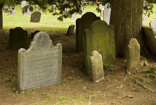 Gravestone Art Tour in Old Burying Ground