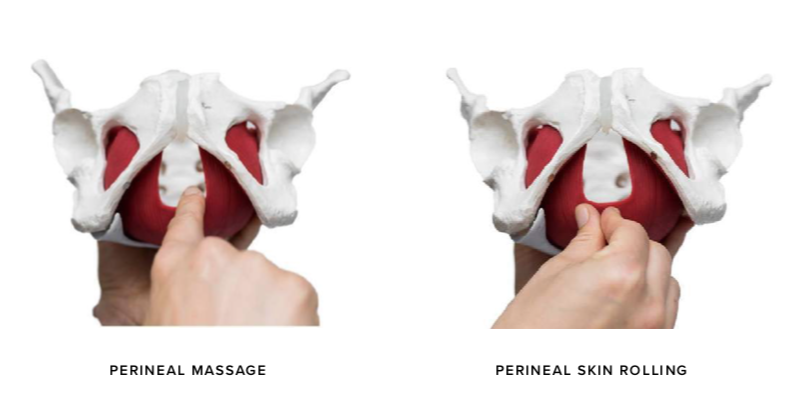 perineal massage.png
