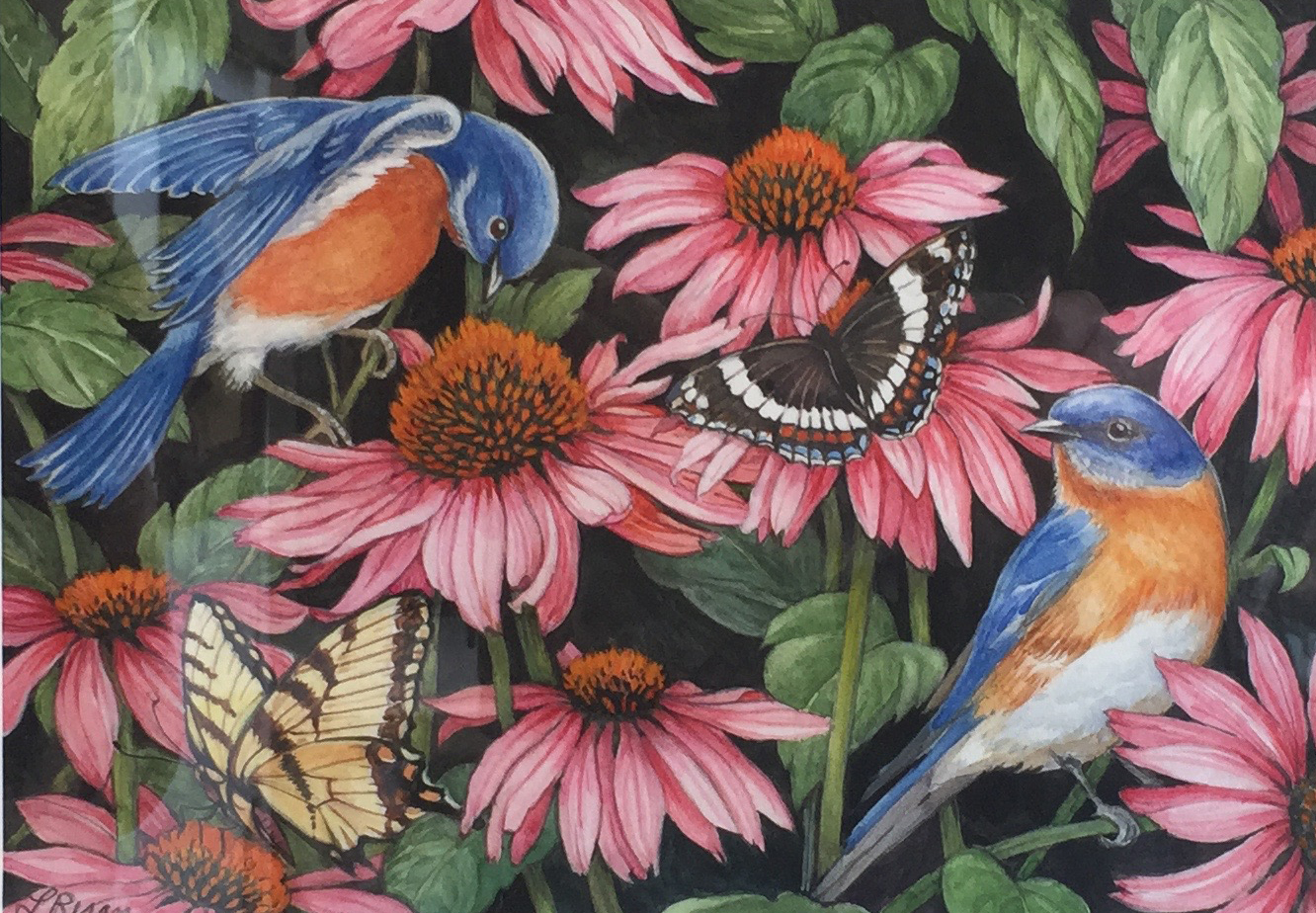Birds and Flowers 2