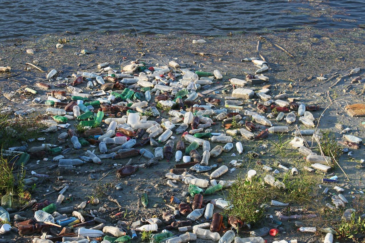 bottles-87342_1280.jpg