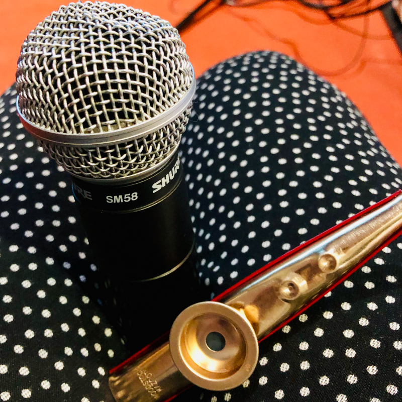 Tools for MC success, a mic & a kazoo to sound people off!