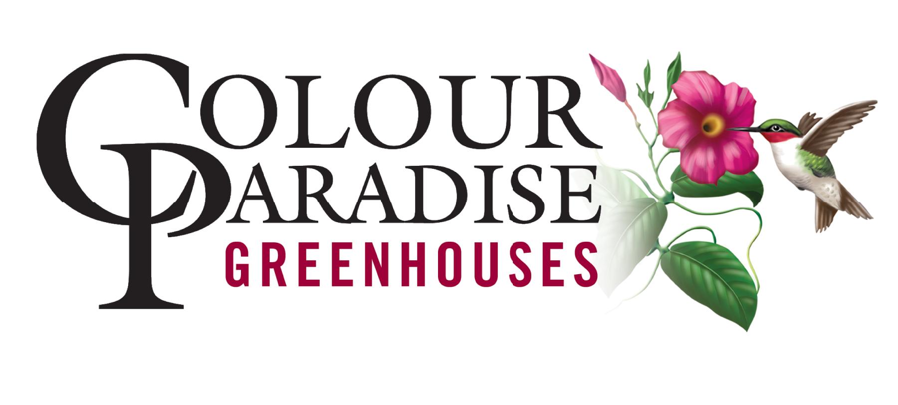 Colour Paradise Logo (1).png