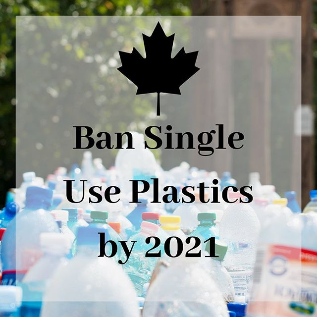 And good Monday to you! We've learned that the Trudeau government will ban single use plastic's as early as 2021. 🎉 🎉🎉🎉 . . Things like plastic straws, cotton swabs, drink stirrers, plates, cutlery, some plastic bags are on the list.  Wanna know more? Check out @cbcnews for the full article! 👍😁 . . What are your thoughts on this? Is it enough? . . #kw #waterlooregion #canada #singleuseplastic #canadianpolitics #onpoli #kwawesome #wrawesome #dtk #dtklove #zerowaste #lowwaste #plasticpollution #actonclimate #climateaction #fridaysforfuture #studentsdemandaction #uw #wlu #waterloo #guelphlife #guelph #guelphontario