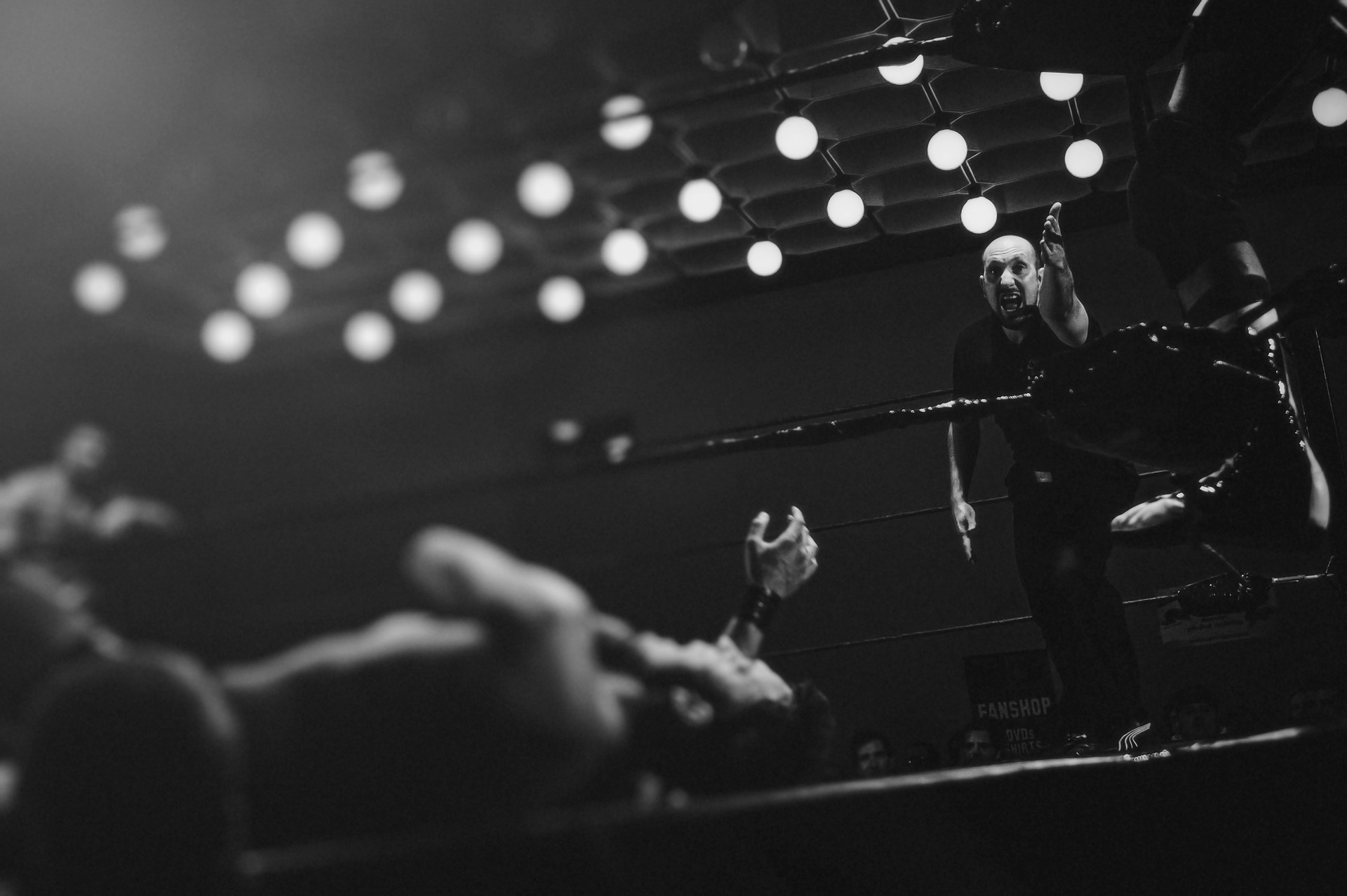 boxing-984174_1920.jpg
