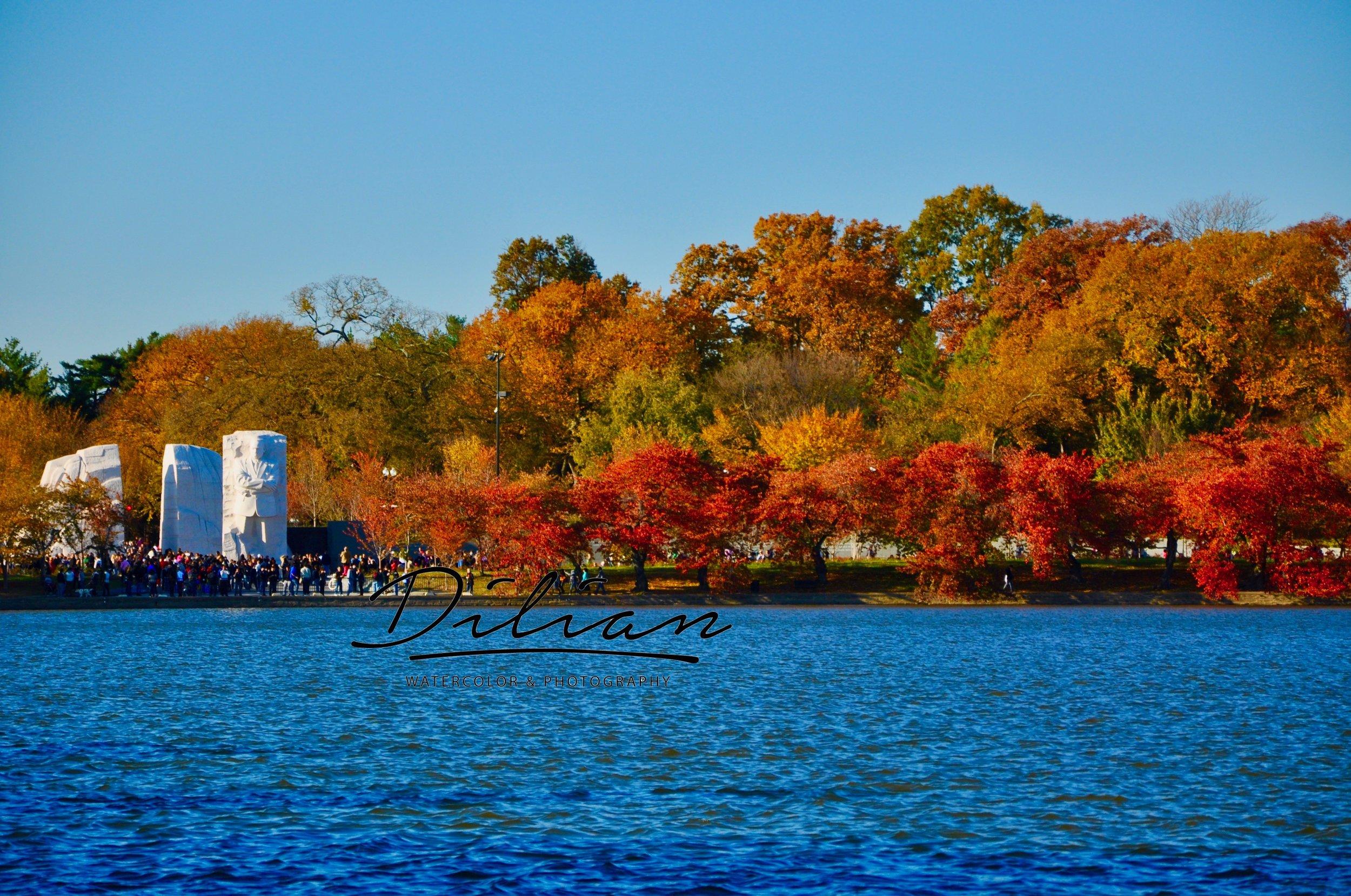 Autumn-Tidal Basin