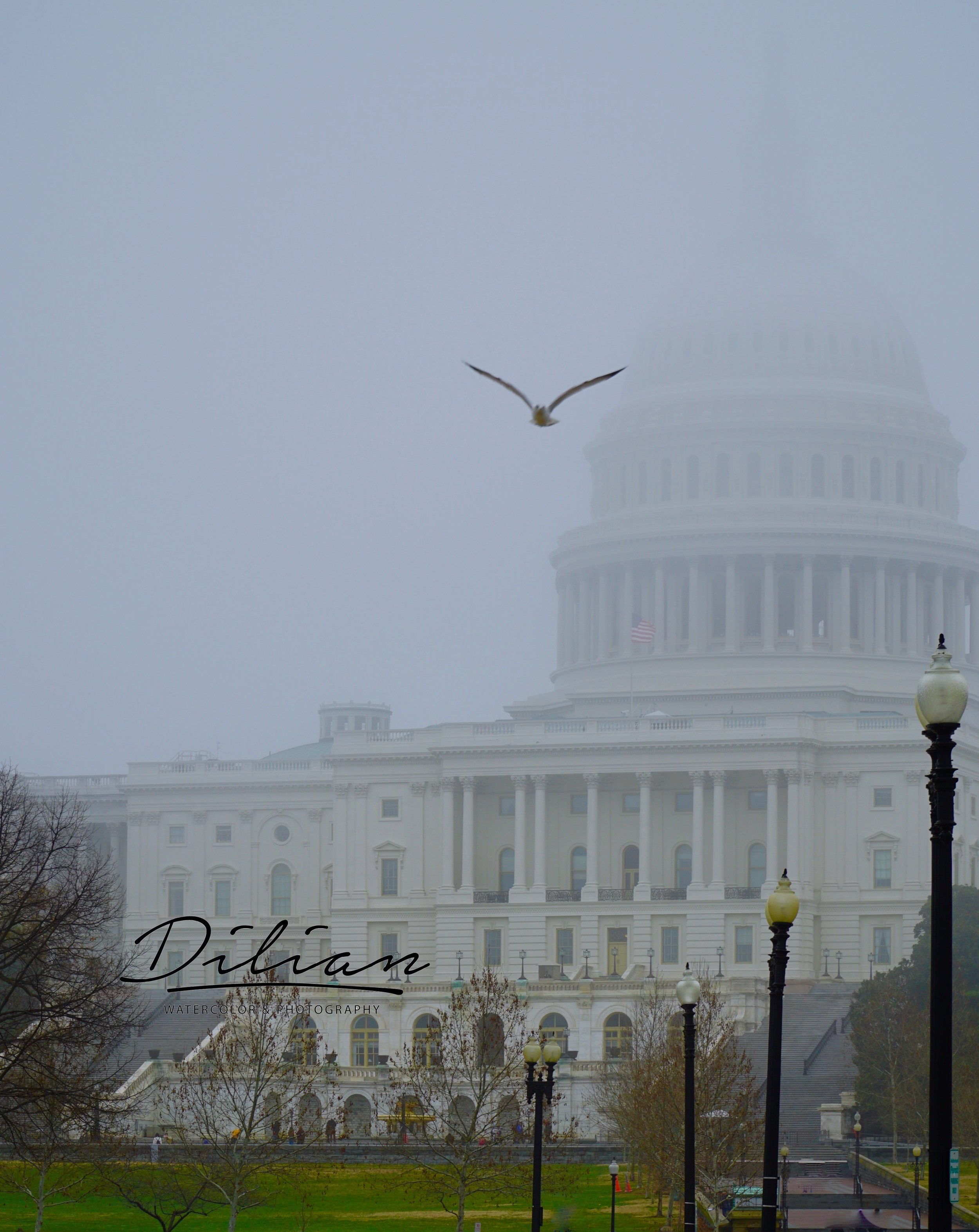 US Capitol Fog