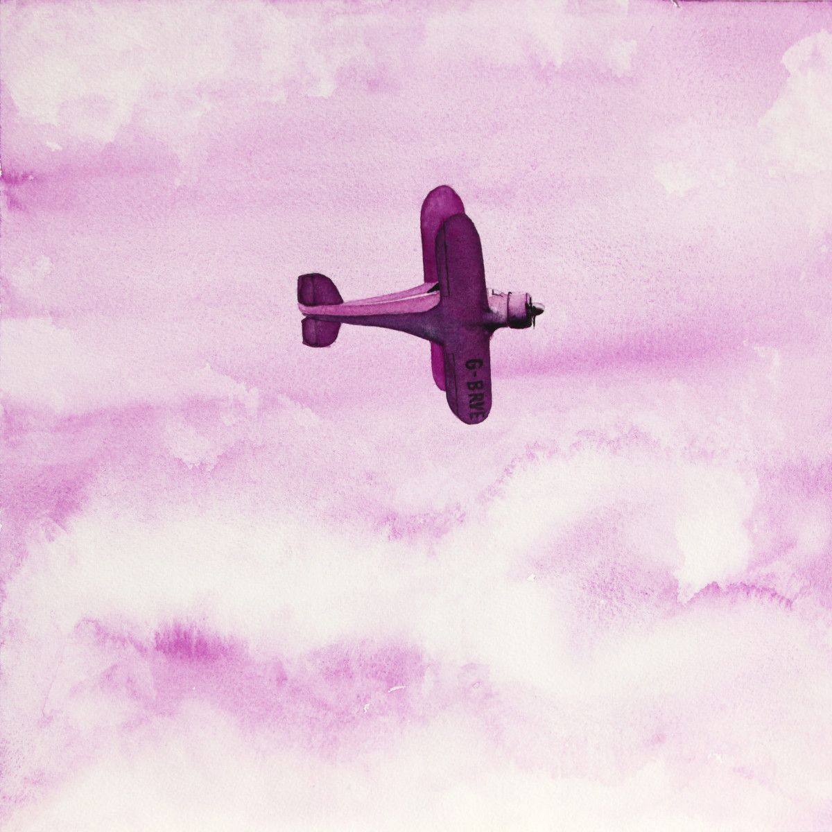 Gordon Phillipson.  Beech Staggerwing Red Violet , 2013. Watercolor. 18 x 18 in. SOLD.