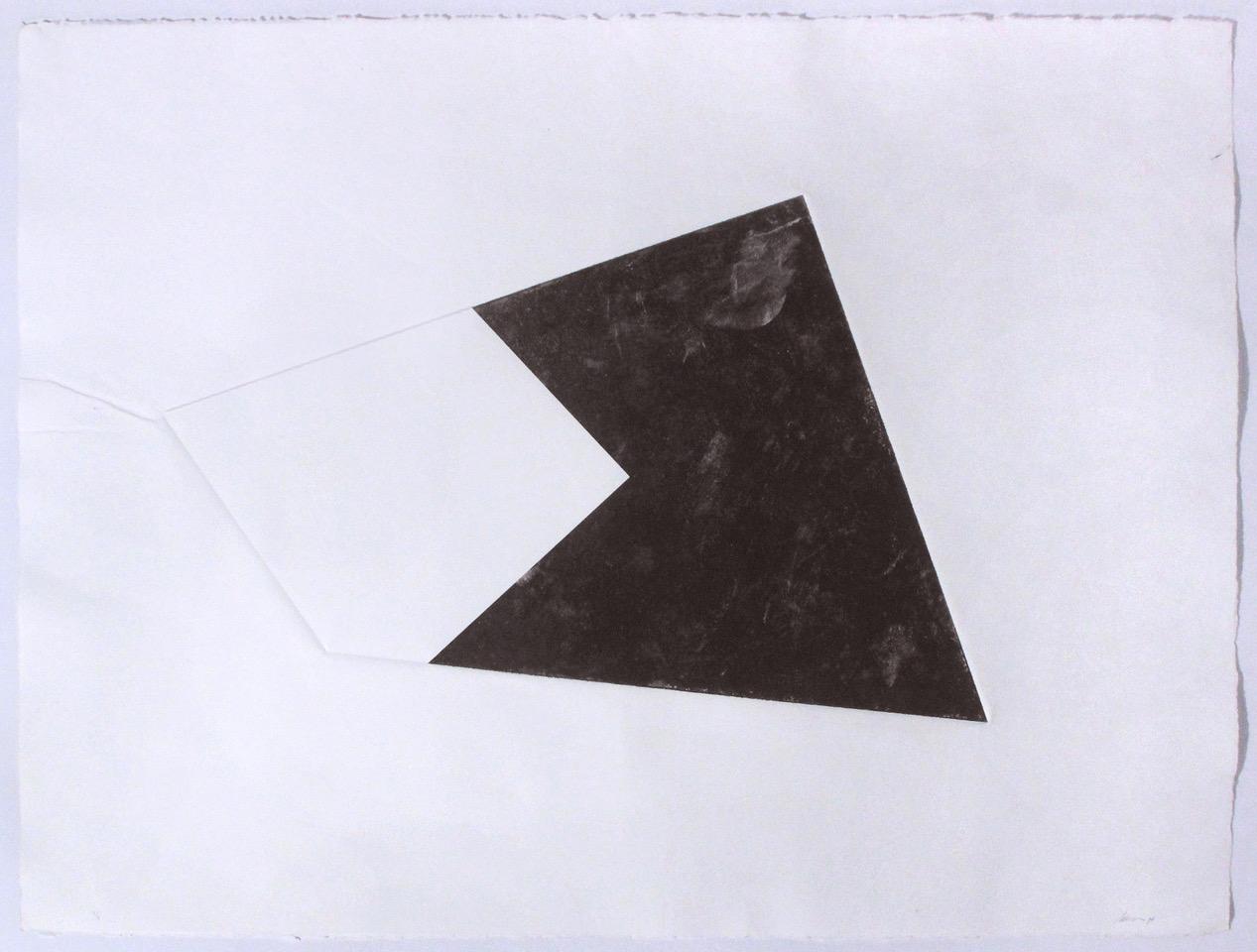 Luisa Duarte, Empty site, 2014, Monotype on paper, 30 x 22 x 0 in.