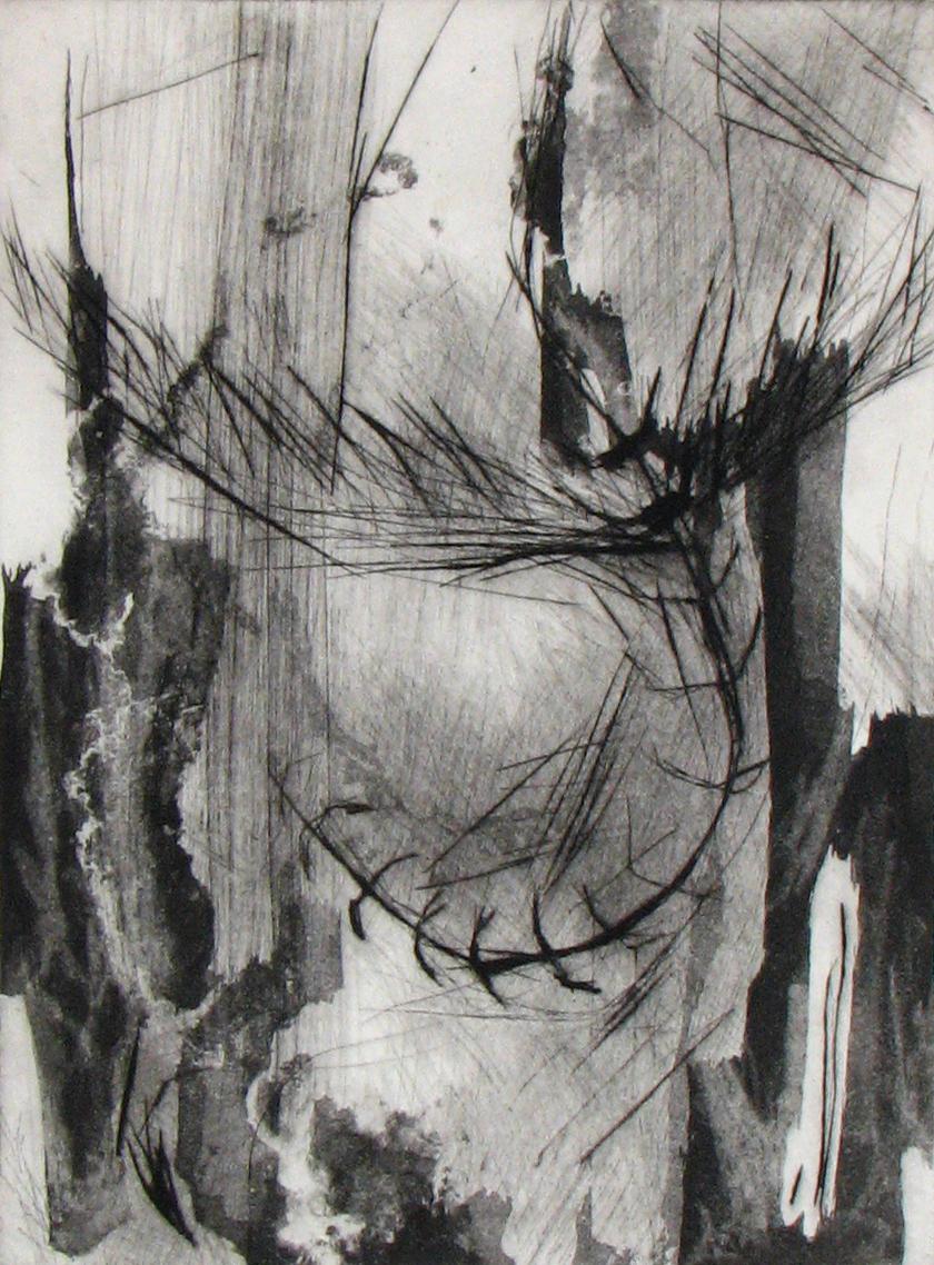 Shanti Conlan, Gravity, Drypoint and Aquatint, 12 x 9 in.
