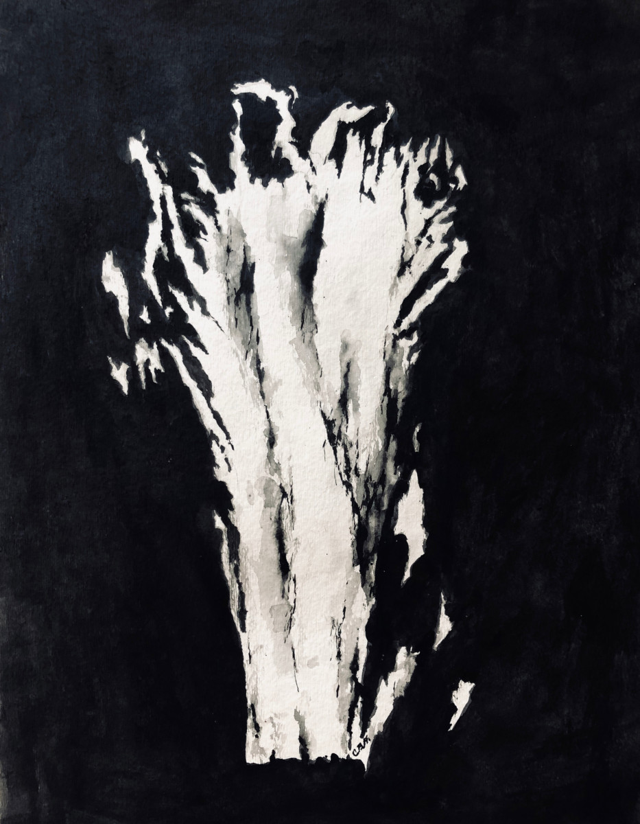 Carolyn Bertrand Hodges, Night Wiles, Ink on Paper, 13.5 x 10.5 IN.