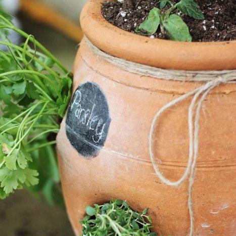Strawberry Pot Herb Garden