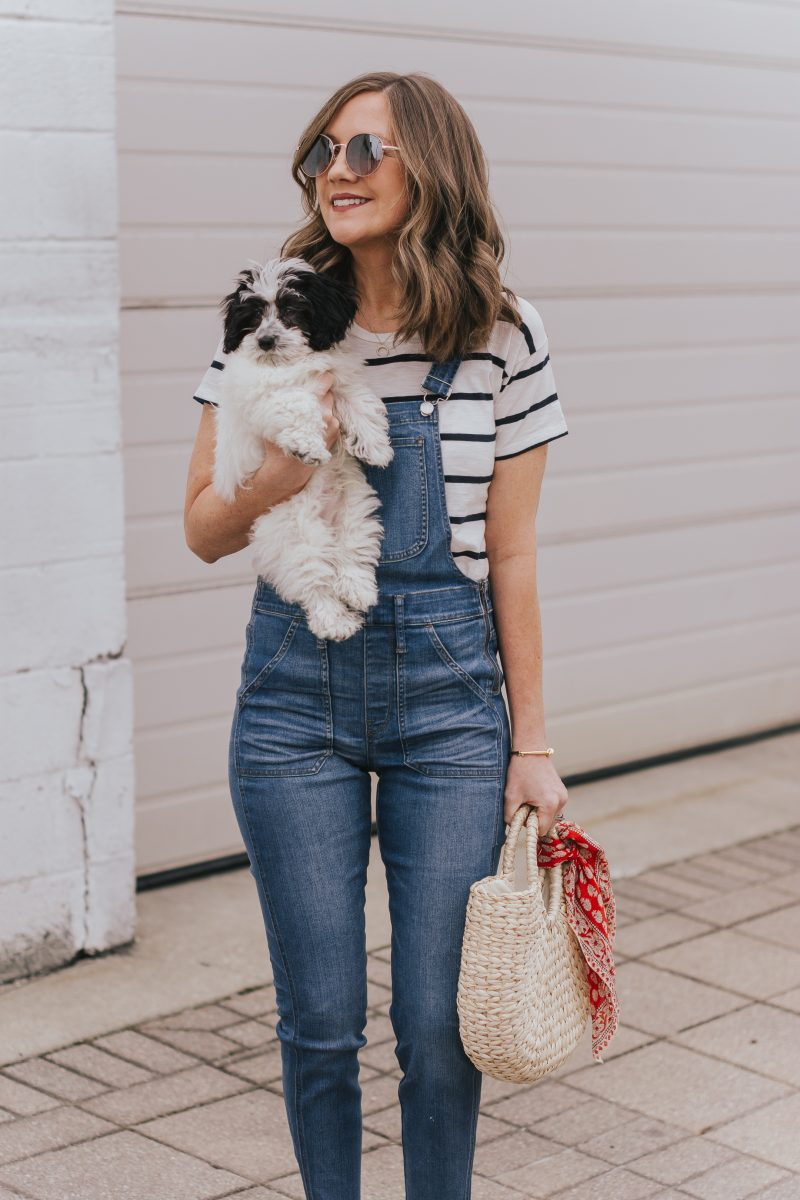 Dexter-mini-aussie-doodle-madewell-skinny-overall-styling-overalls-at-any-age-casual-overall-outfit-easy-and-cute-mom-outfit-two-ways-to-style-a-bandana-scarf-15-800x1200.jpg