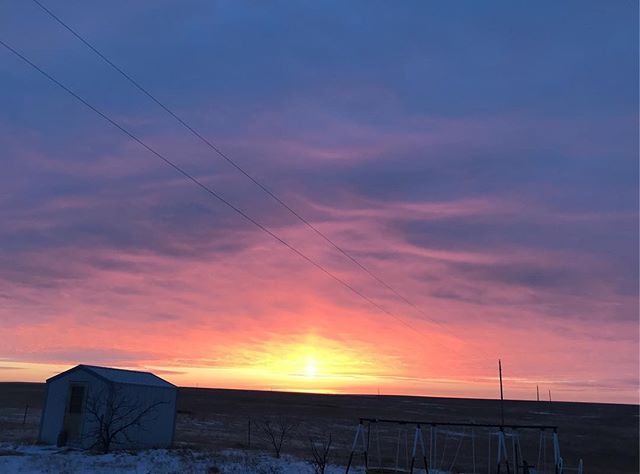 With the wintery, South Dakota cold comes some of the most beautiful sunrises of the year! #beef #cattle #cows #sdsunset #lakotaowned #locallygrown