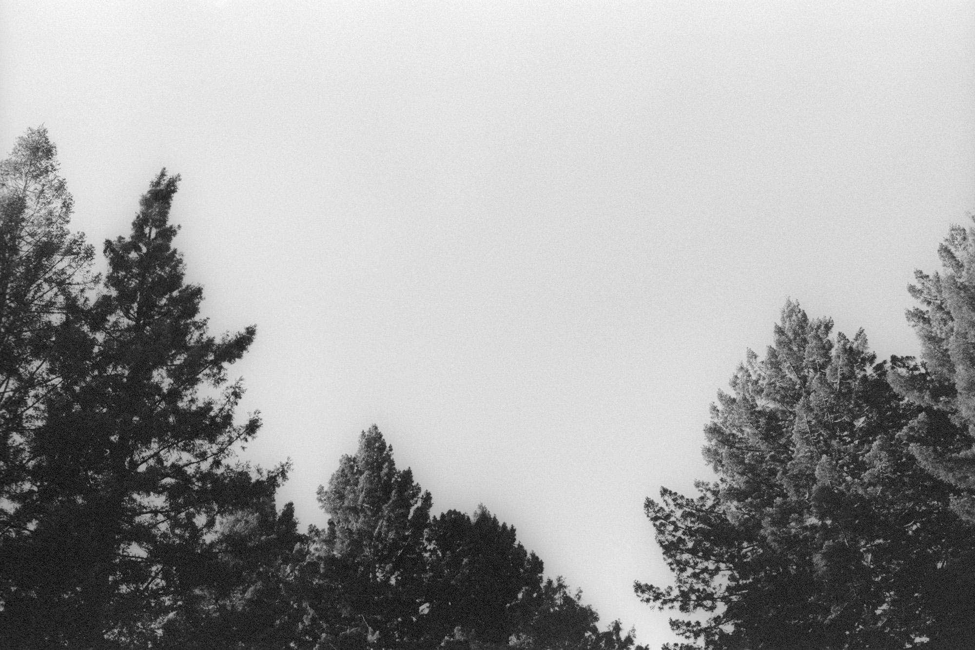 35mm-6.jpg