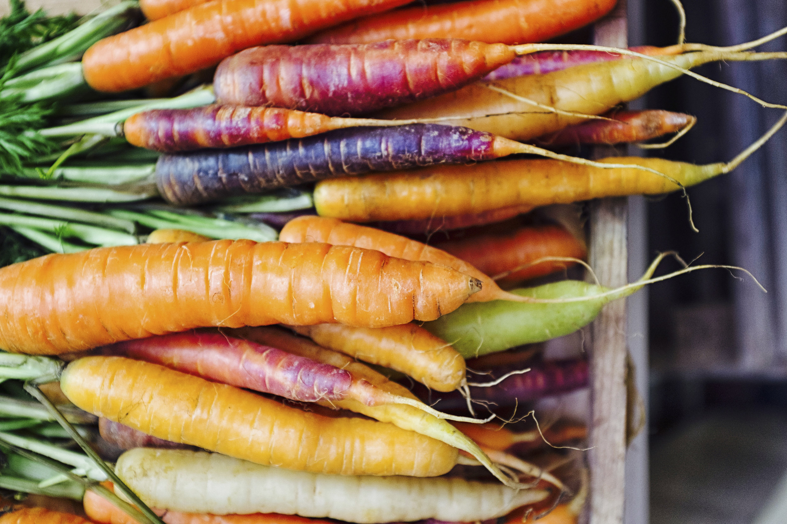 GettyImages-618540744-carrots.jpg