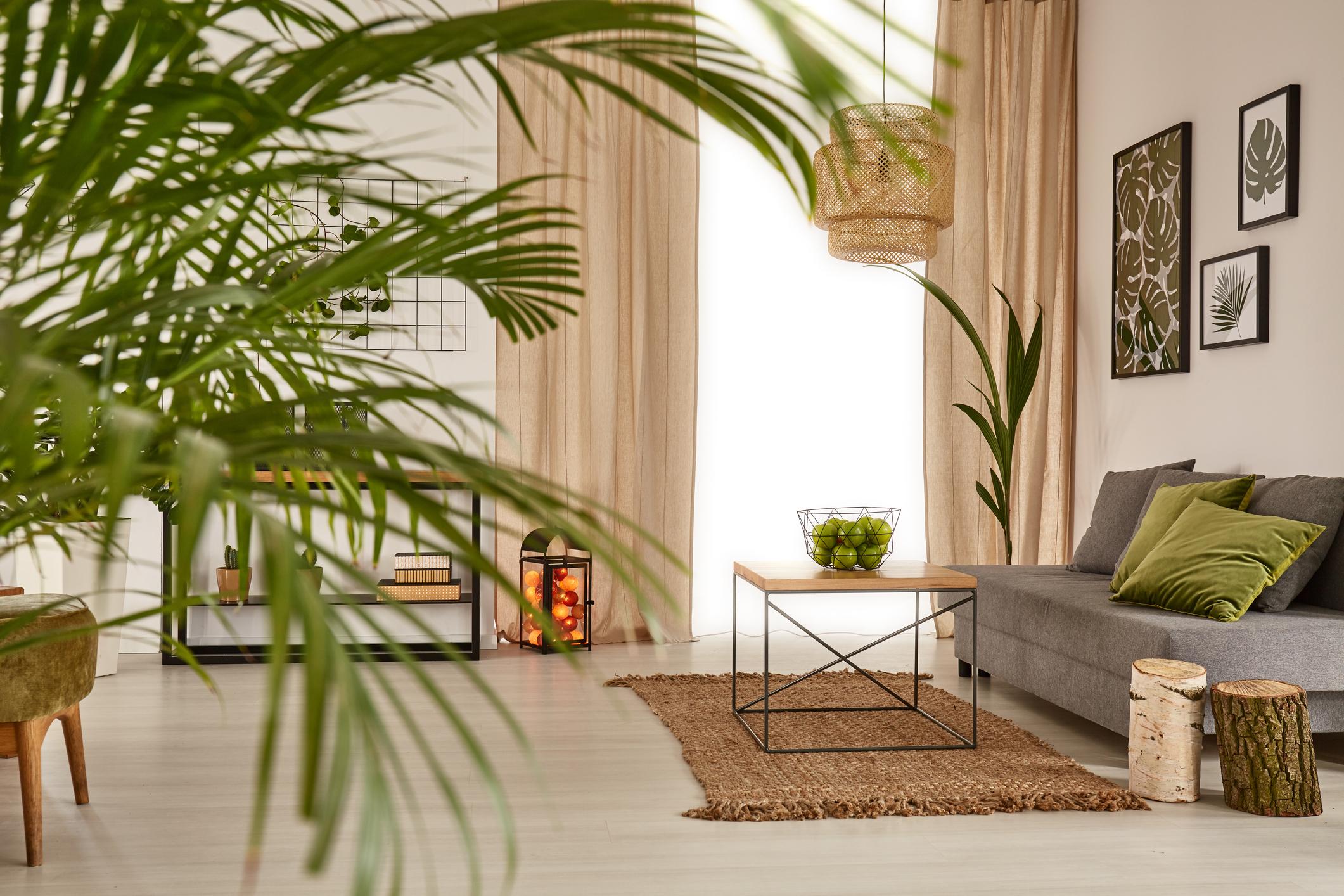 Living Room Cover.jpg