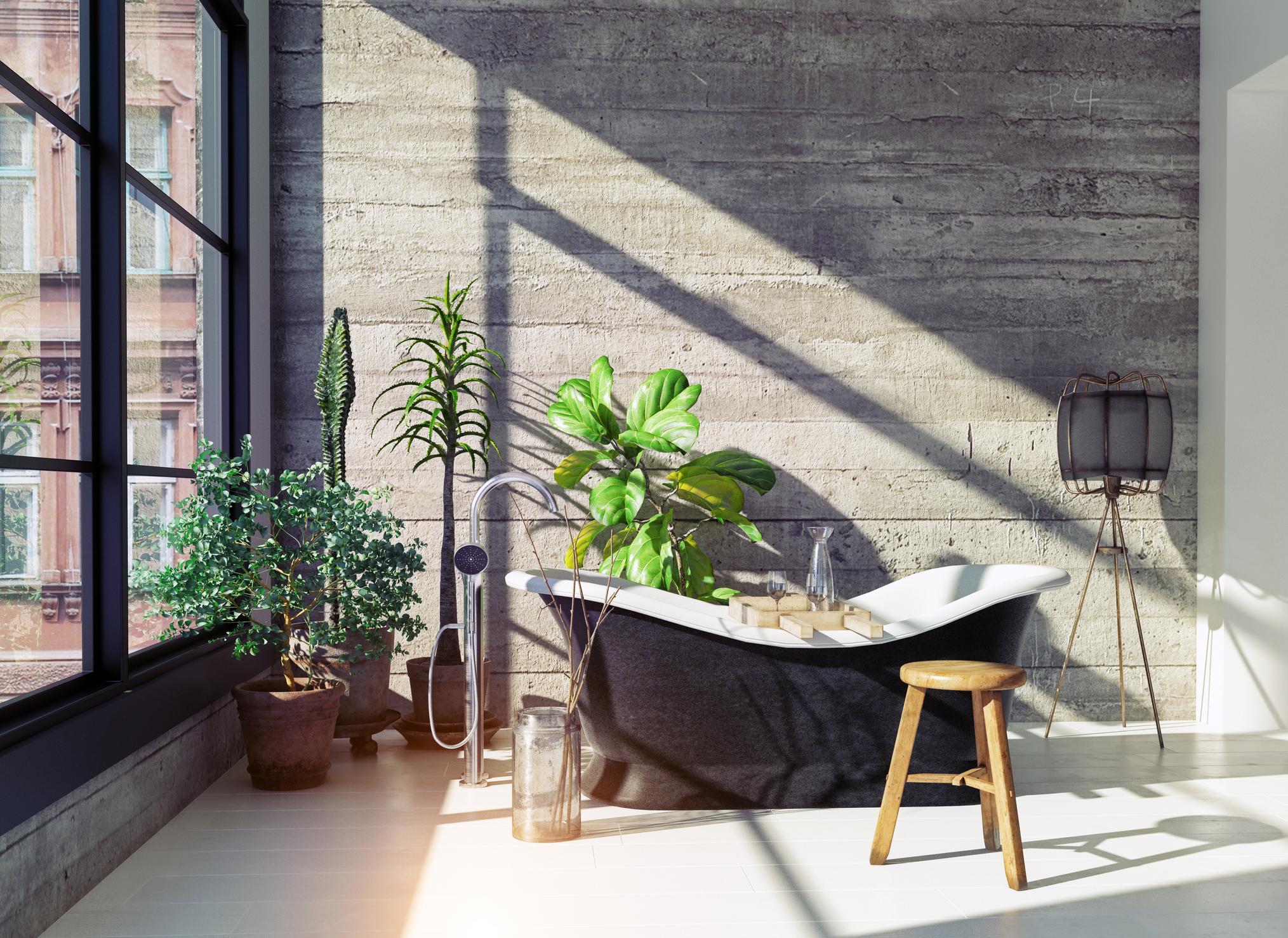 Bathroom Houseplant Cover.jpg