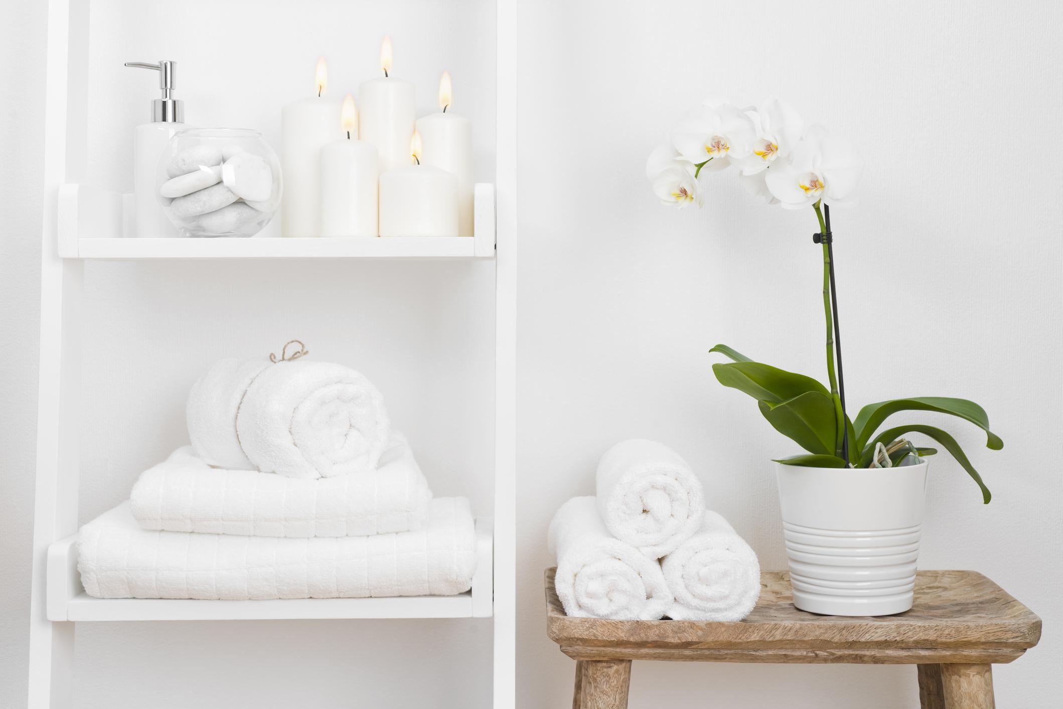 Bathroom - Orchid .jpg