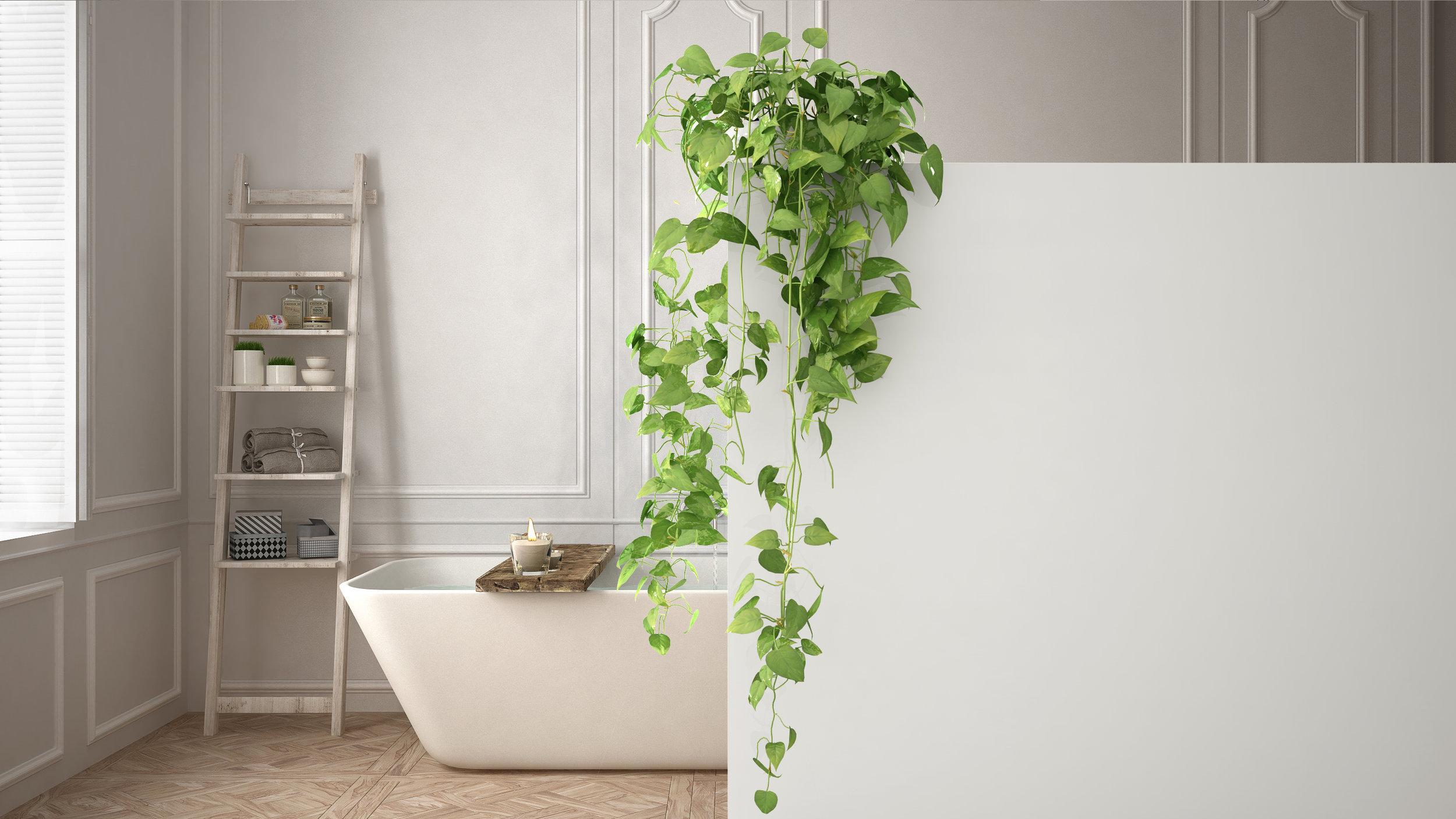 Bathroom - Ivy.jpg